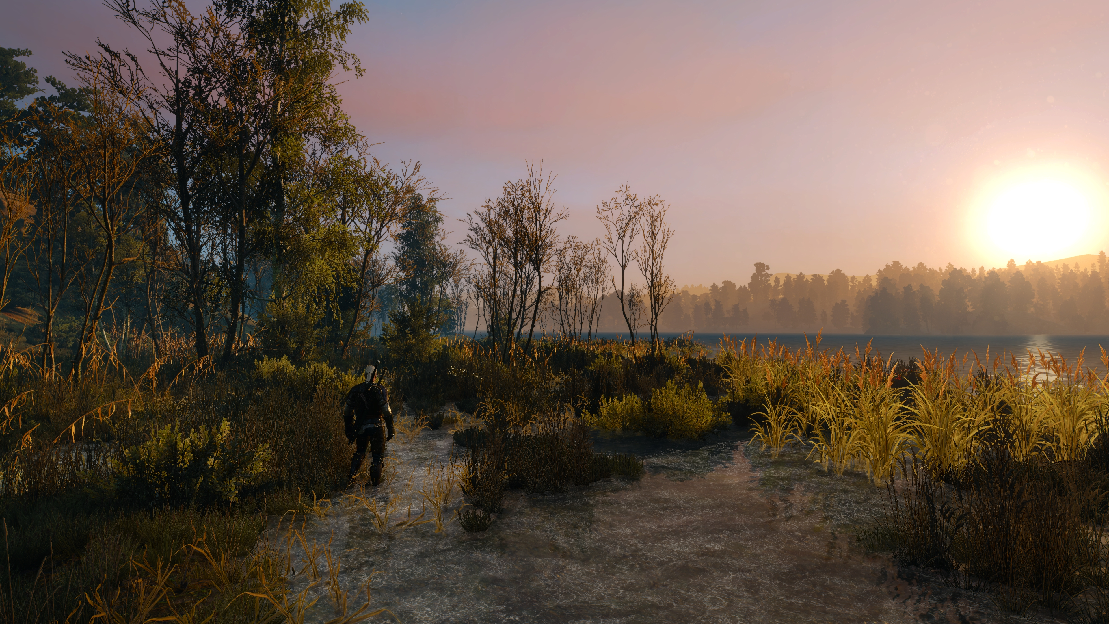 The Witcher 3 Super-Resolution 2017.12.21 - 00.19.08.21.jpg - Witcher 3: Wild Hunt, the