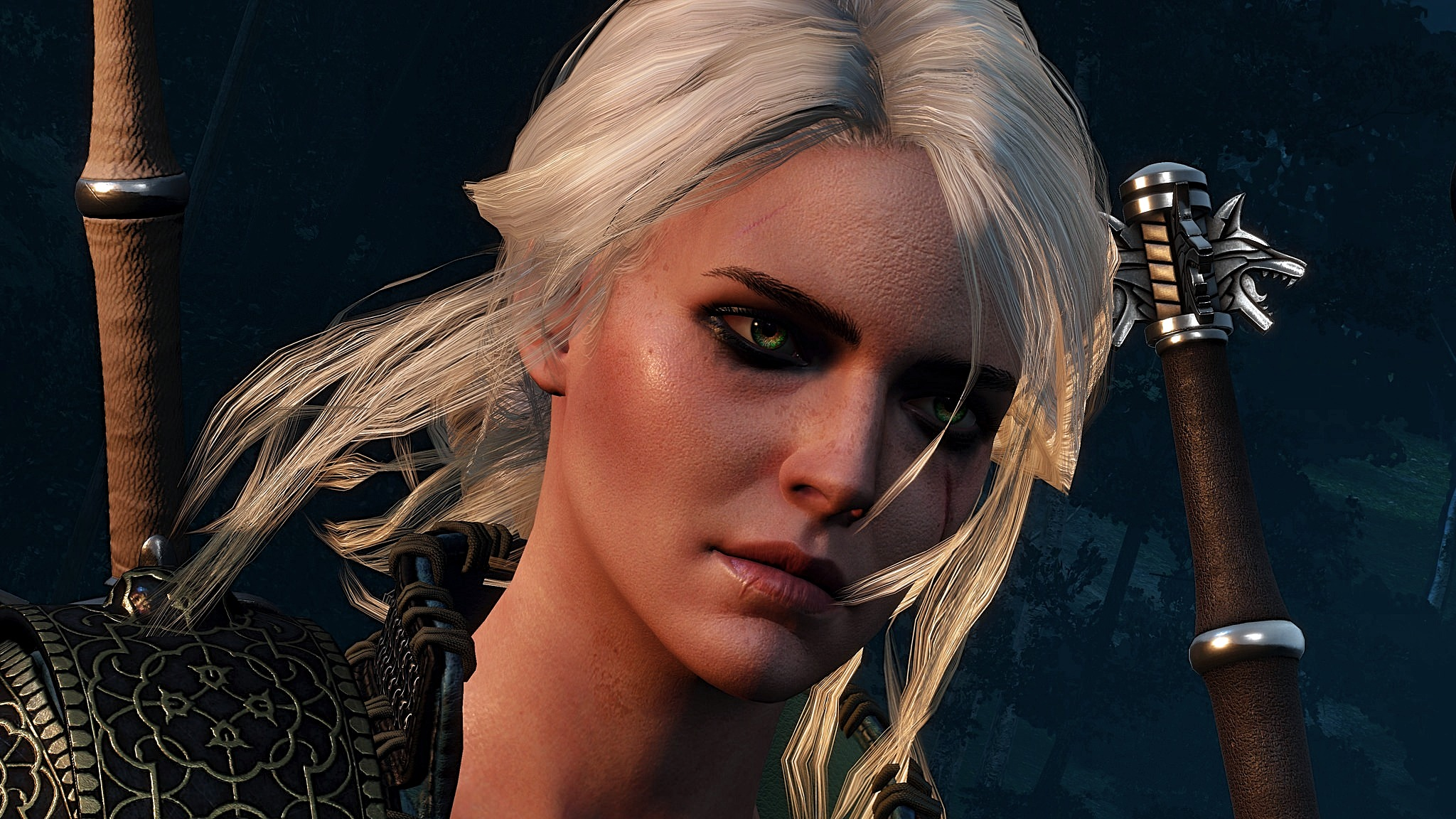 a (4).jpg - Witcher 3: Wild Hunt, the