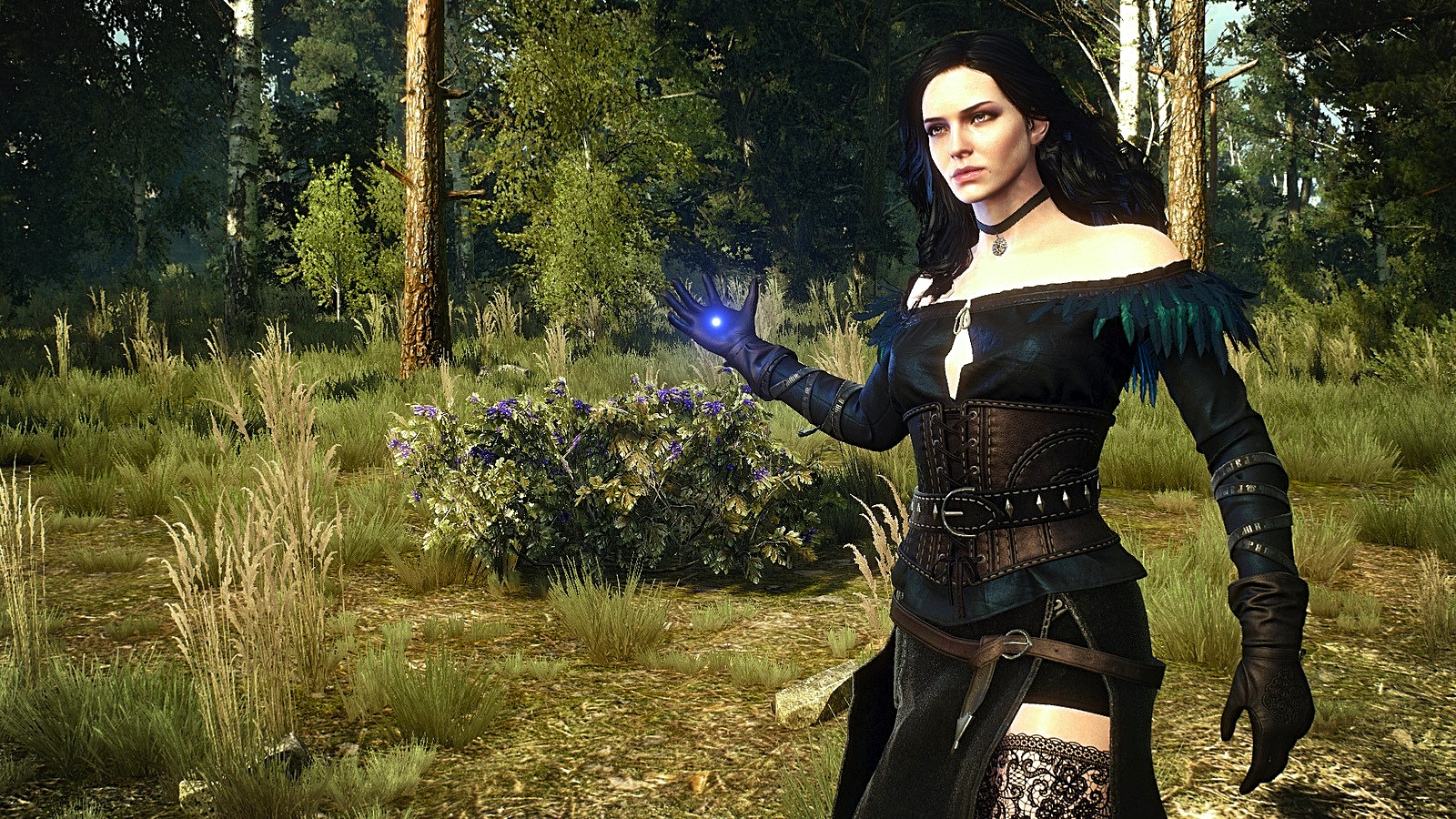 c (1).jpg - Witcher 3: Wild Hunt, the