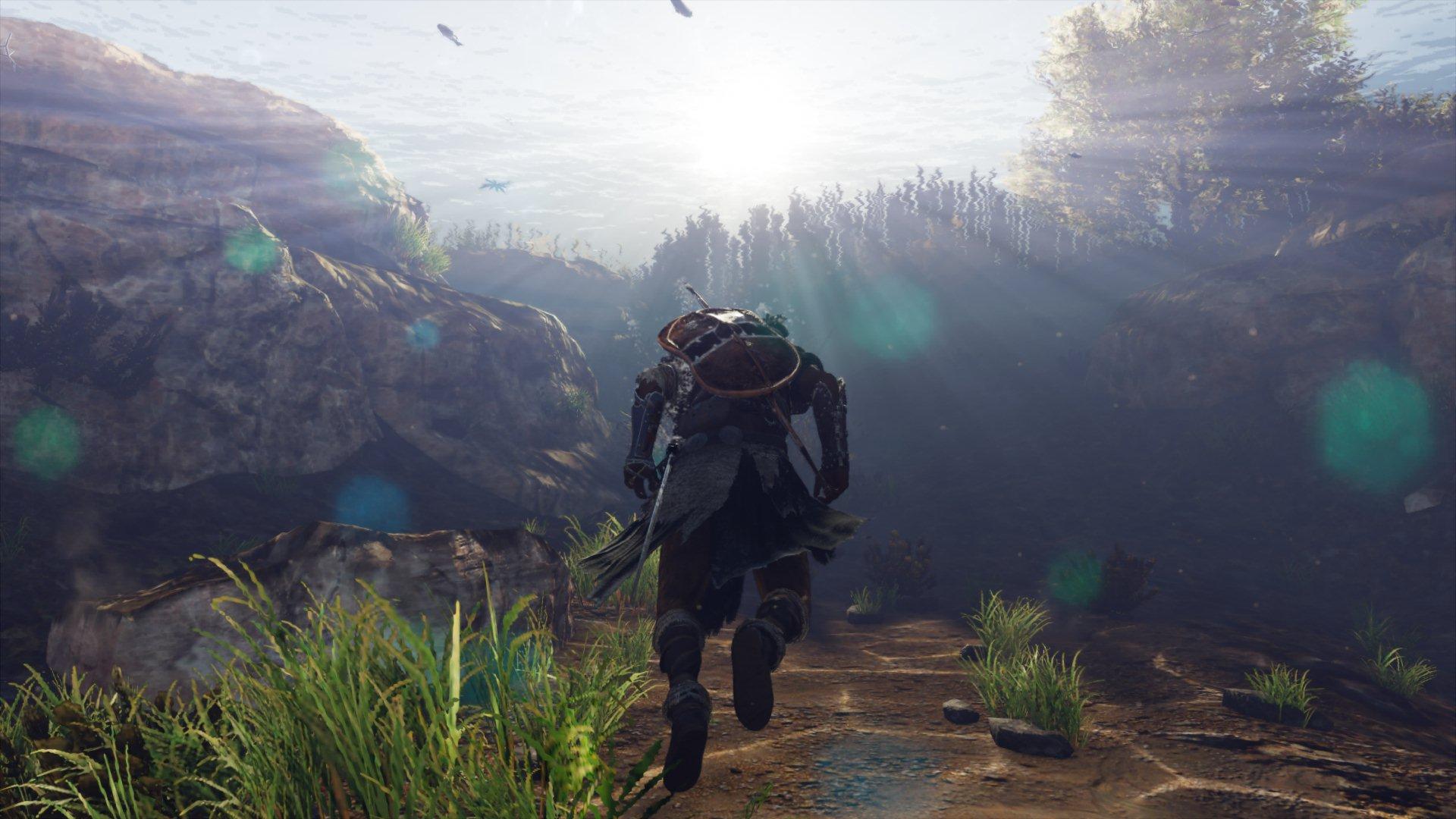 20180213071953.jpg - Assassin's Creed: Origins