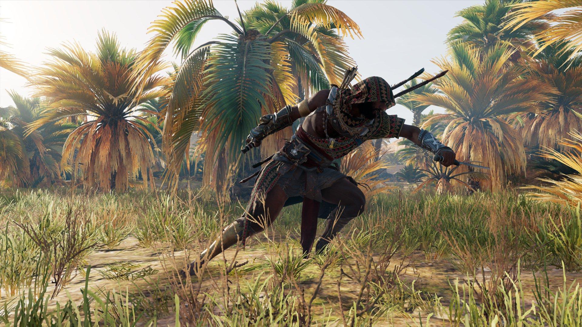 20180211001541.jpg - Assassin's Creed: Origins