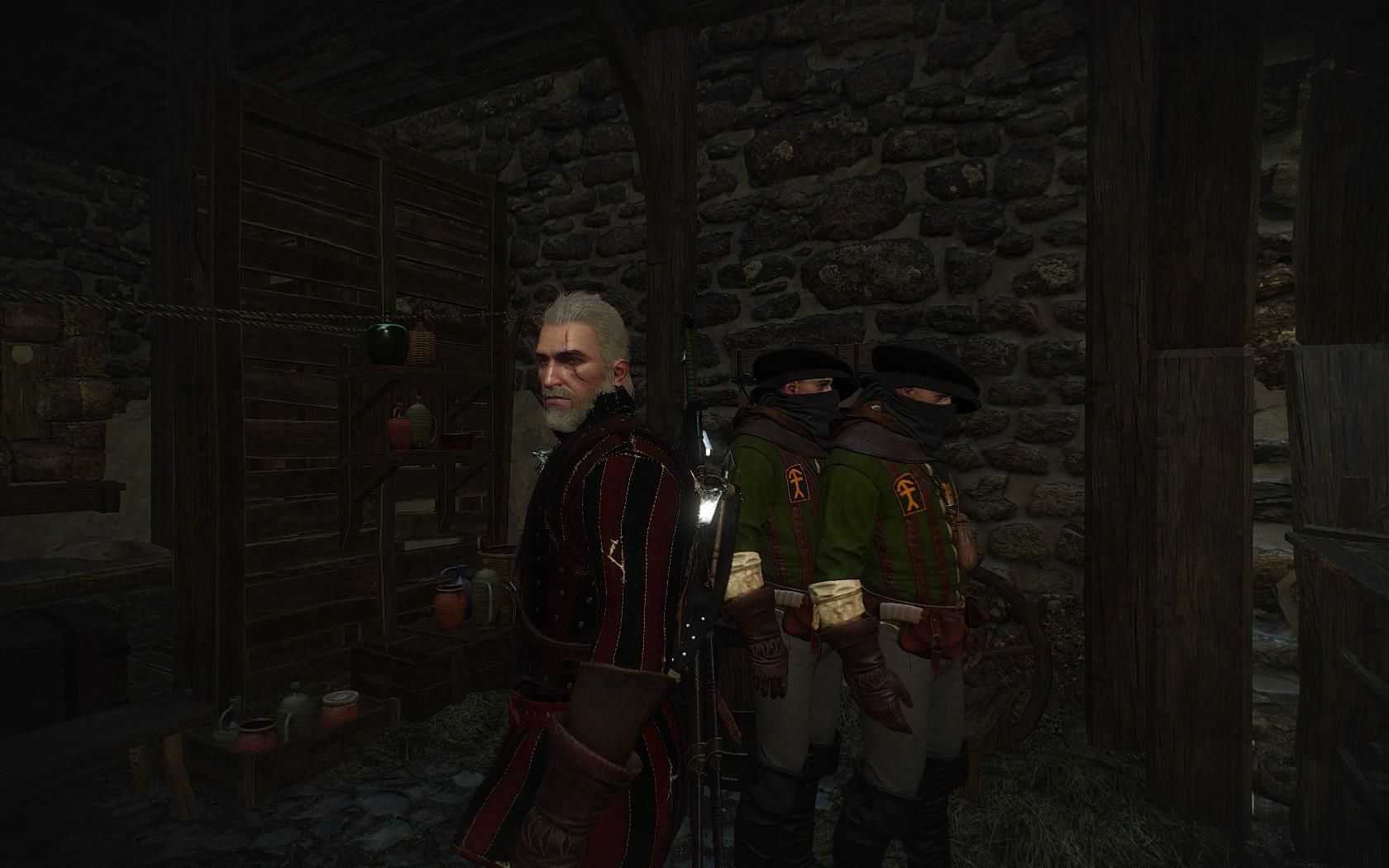 Р - Разнообразие - Witcher 3: Wild Hunt, the близнецы, копия, разнообразие