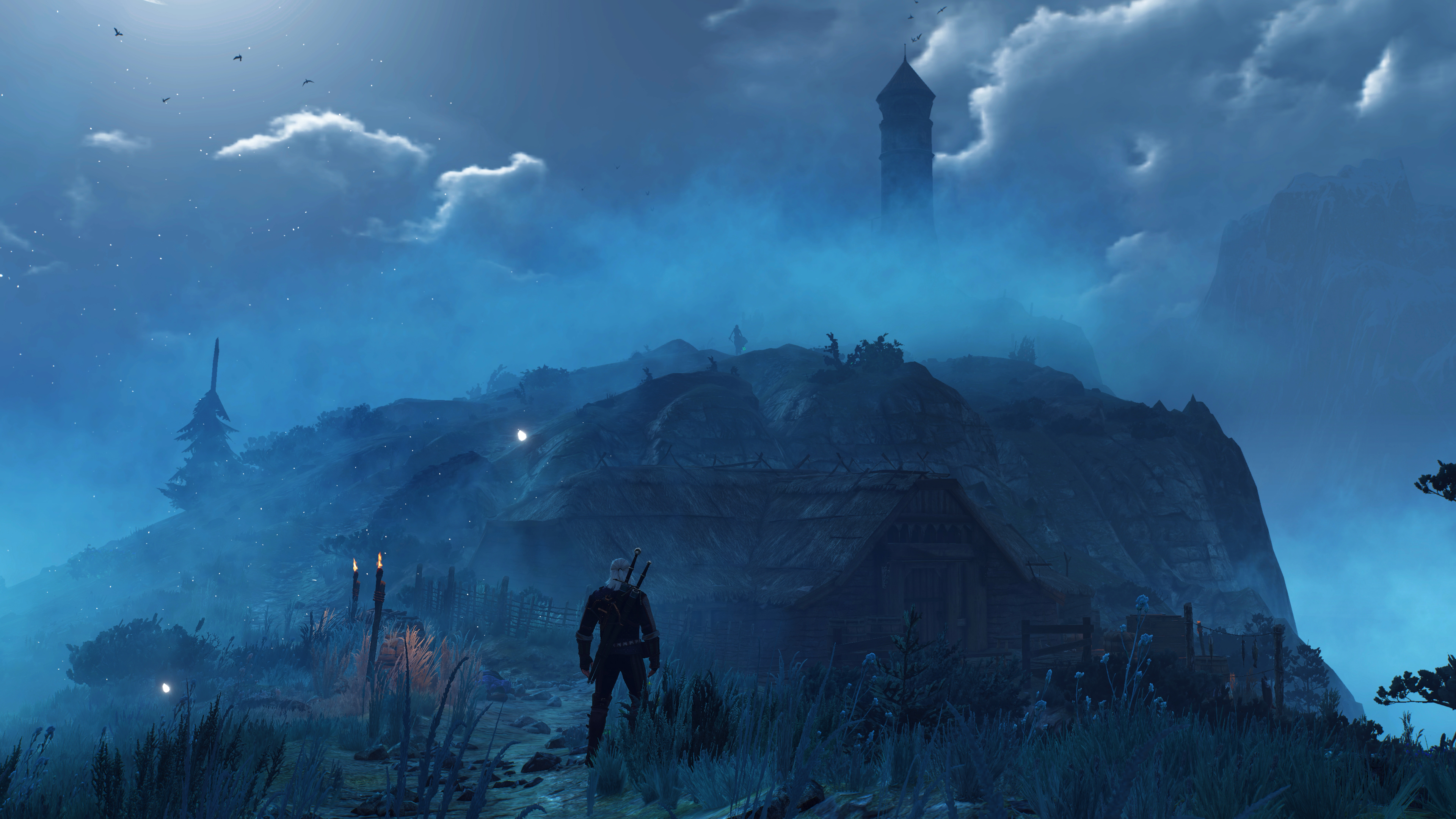 Виверна - Witcher 3: Wild Hunt, the
