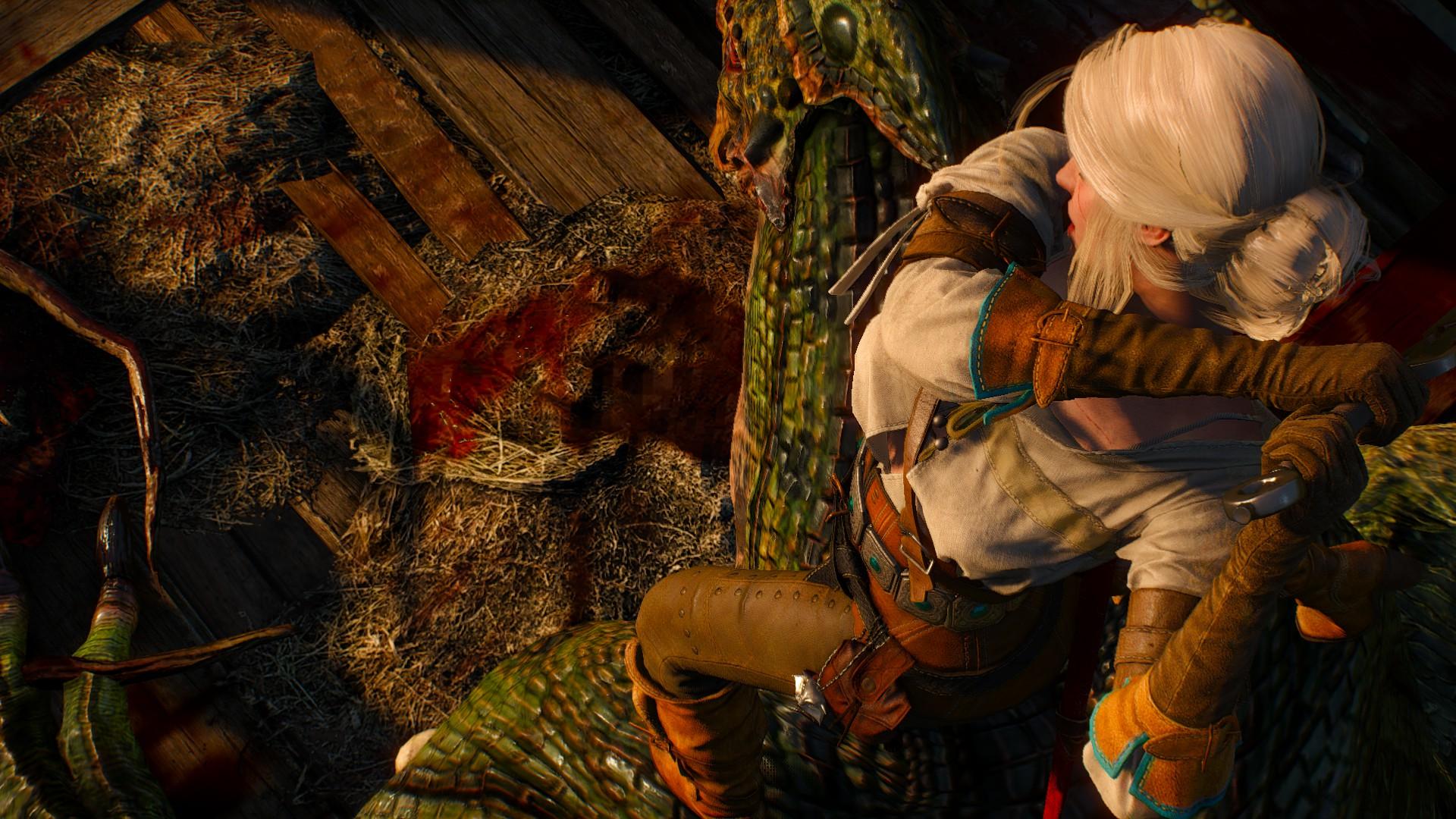 Witcher 3 019.jpg - Witcher 3: Wild Hunt, the