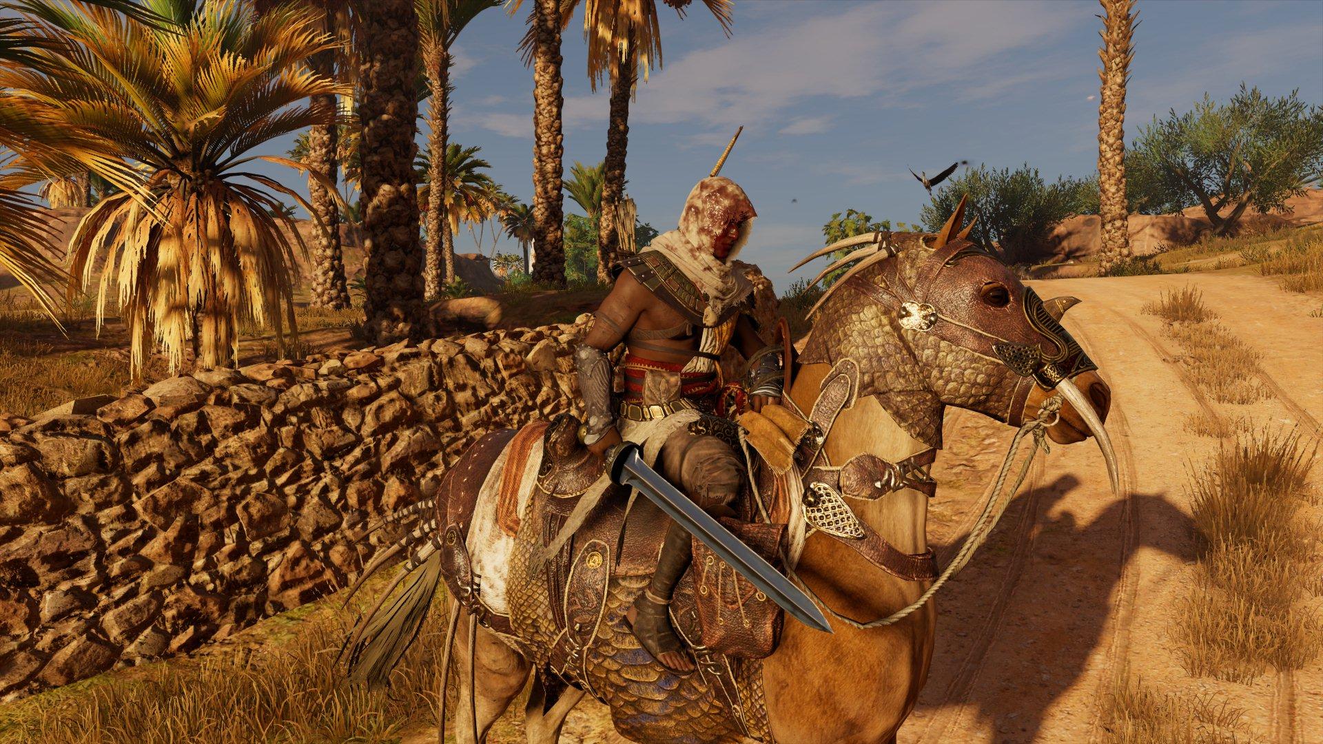 00010.Jpg - Assassin's Creed: Origins