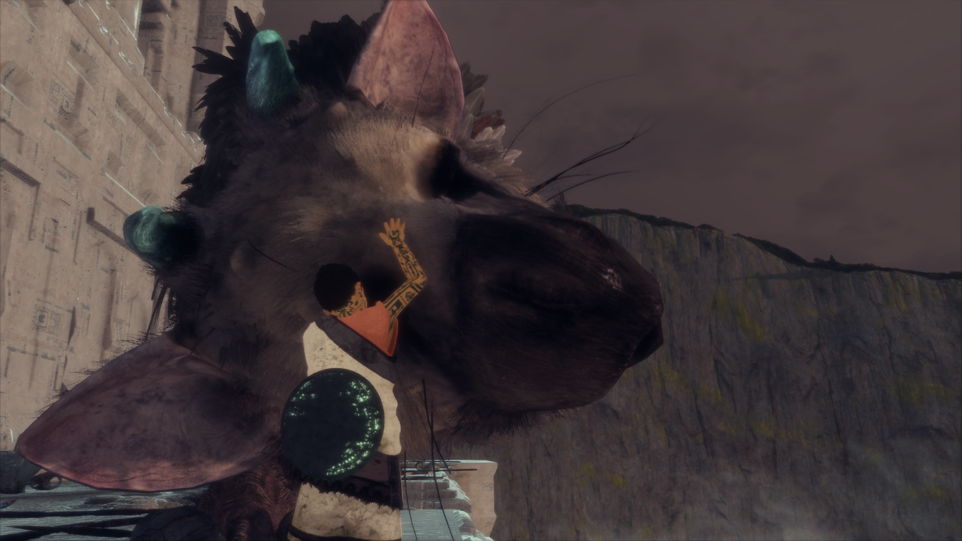 The Last Guardian™_20180317174226.png - Last Guardian, the
