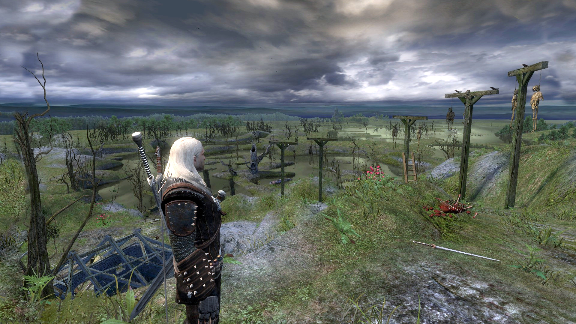 5.jpg - Witcher, the