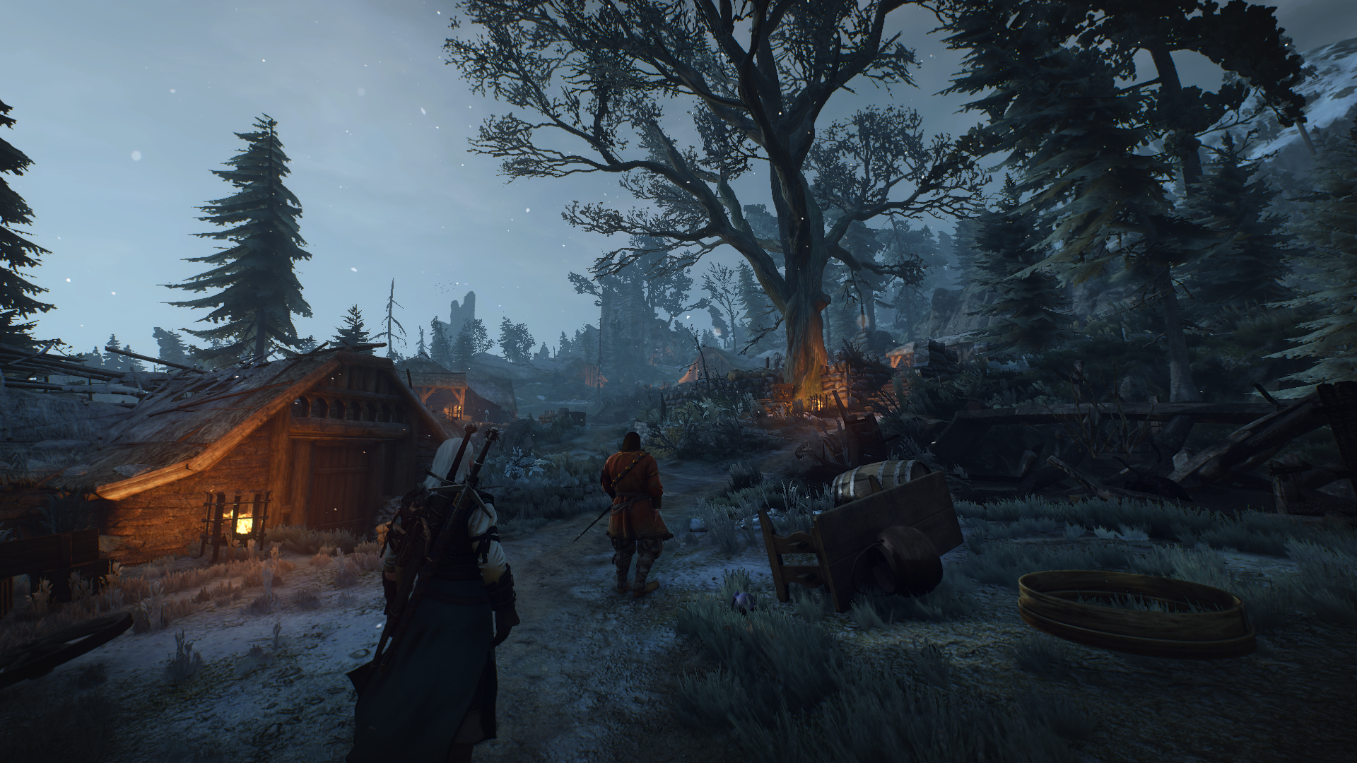 ansel - Witcher 3: Wild Hunt, the