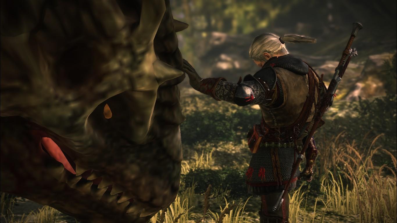 Саския. фин. бой - Witcher 2: Assassins of Kings, the