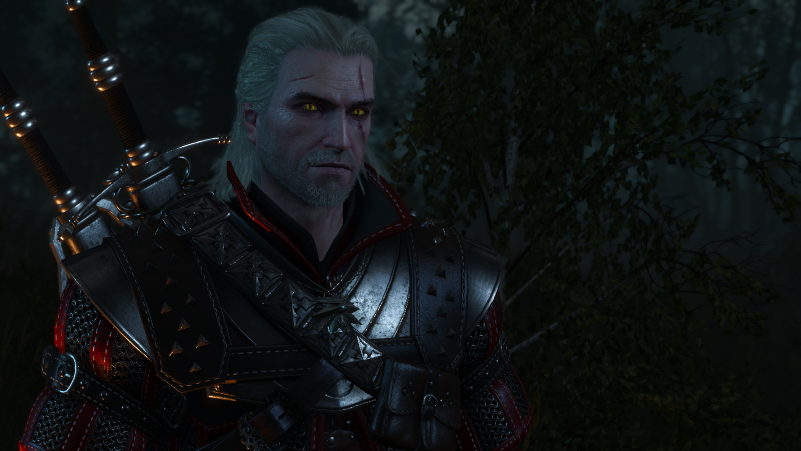 witcher3_2018-06-14_21-52-43-93.jpg - Witcher 3: Wild Hunt, the