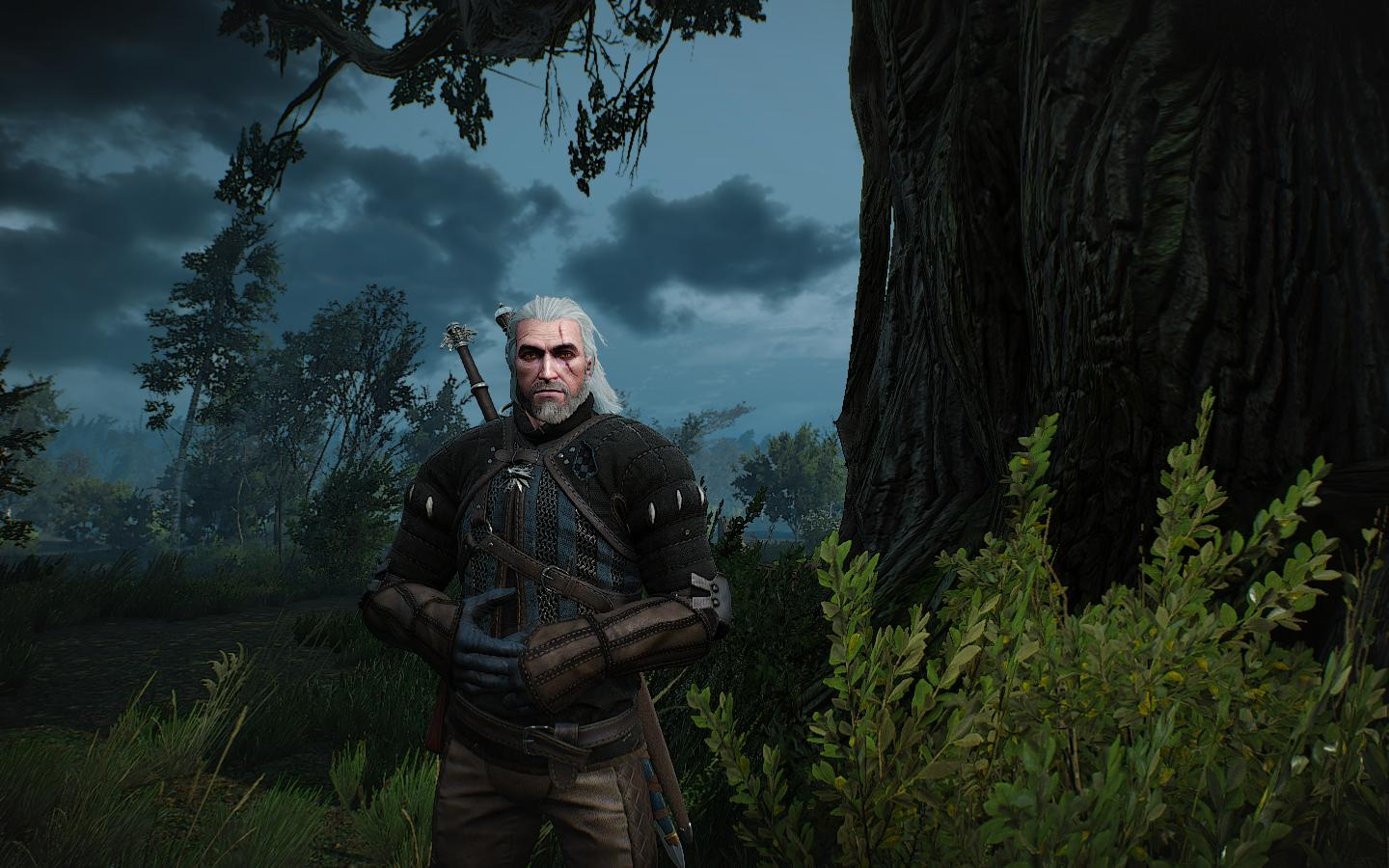 Геральт - Witcher 3: Wild Hunt, the