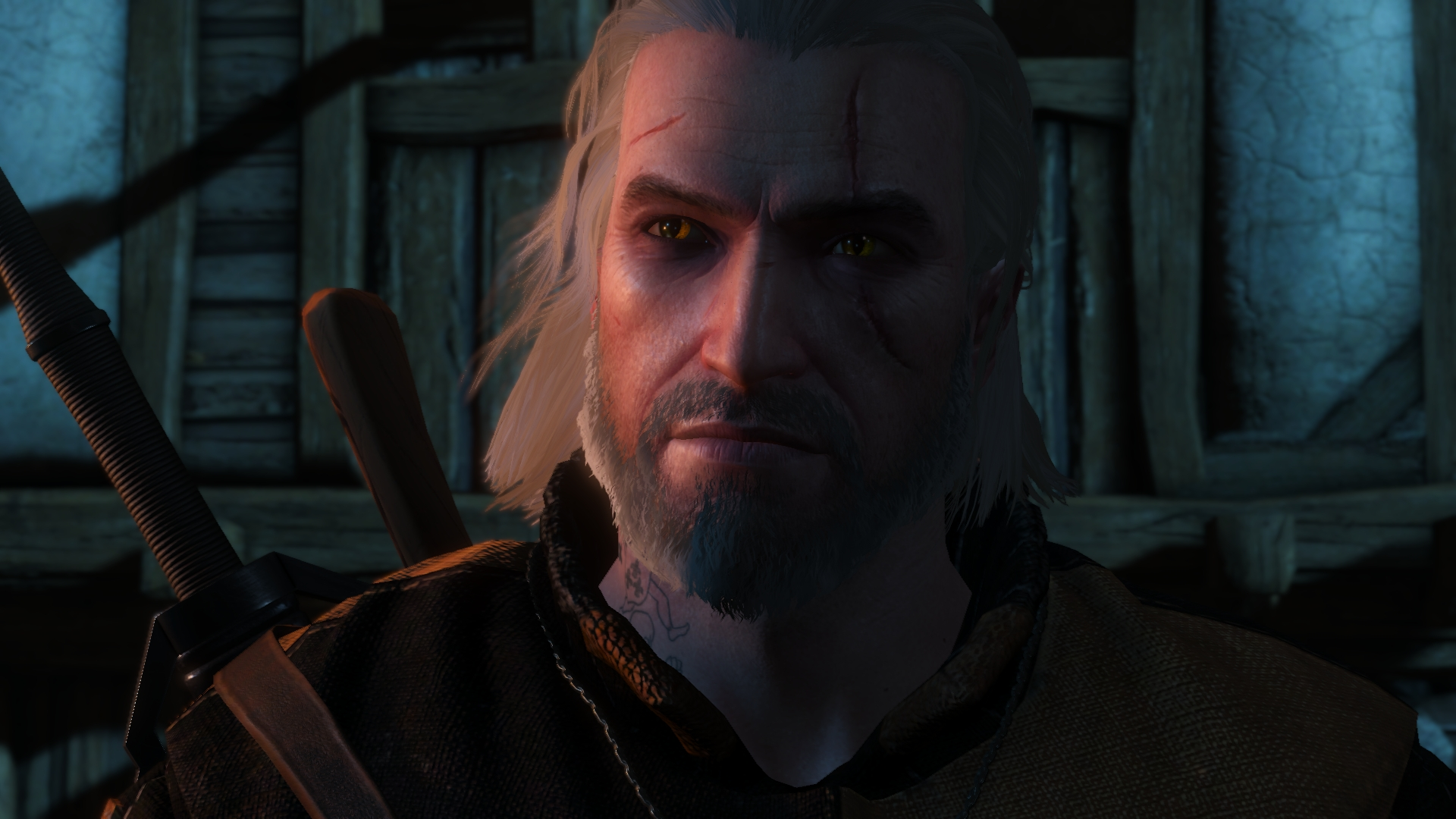 witcher3 2016-10-04 22-35-00-09.jpg - Witcher 3: Wild Hunt, the