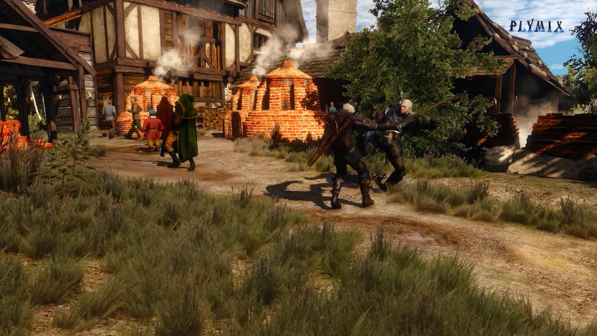 11 бой с допплером.png - Witcher 3: Wild Hunt, the