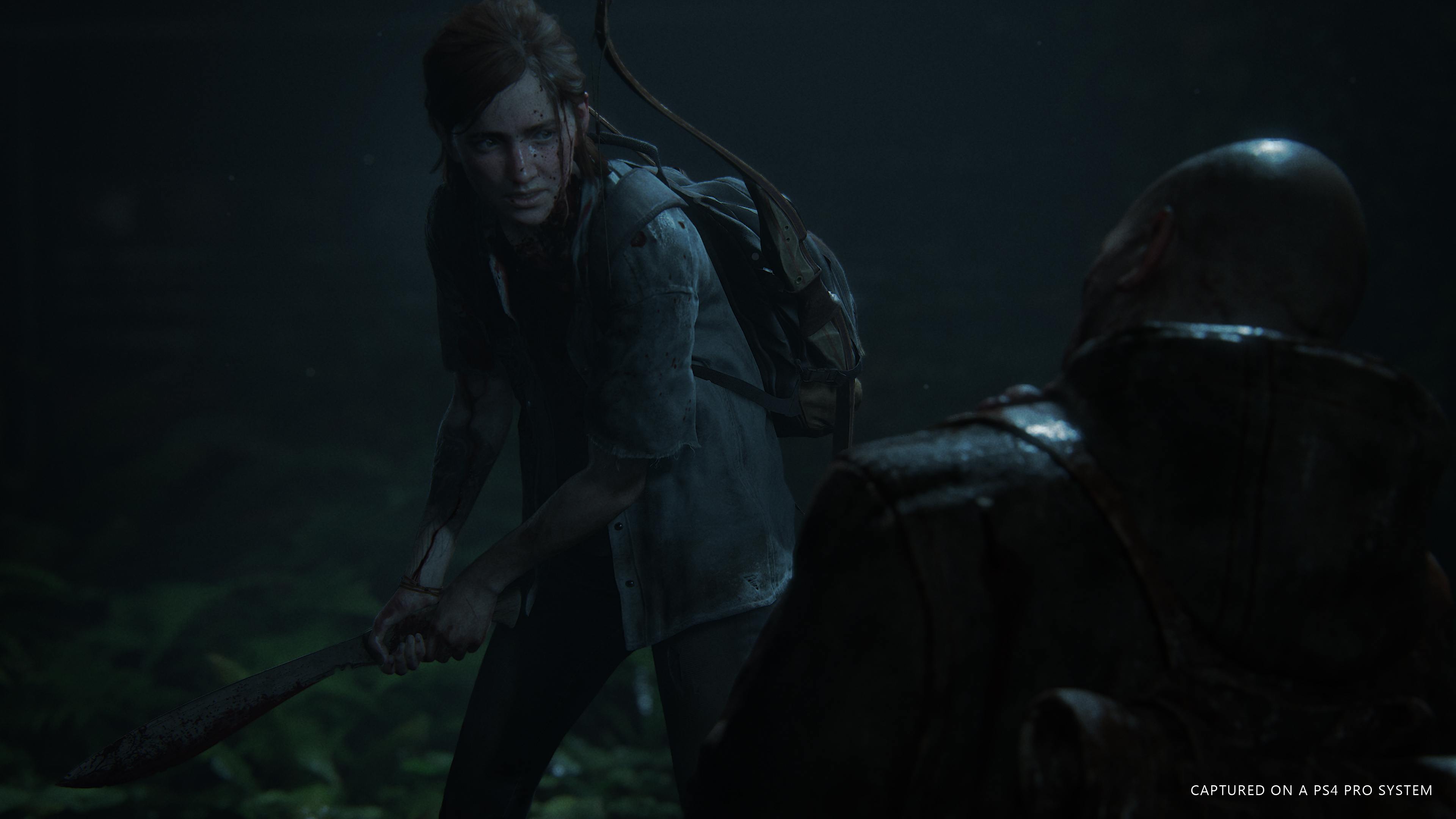 The Last of Us: Part 2 - Last of Us: Part 2, the 4K