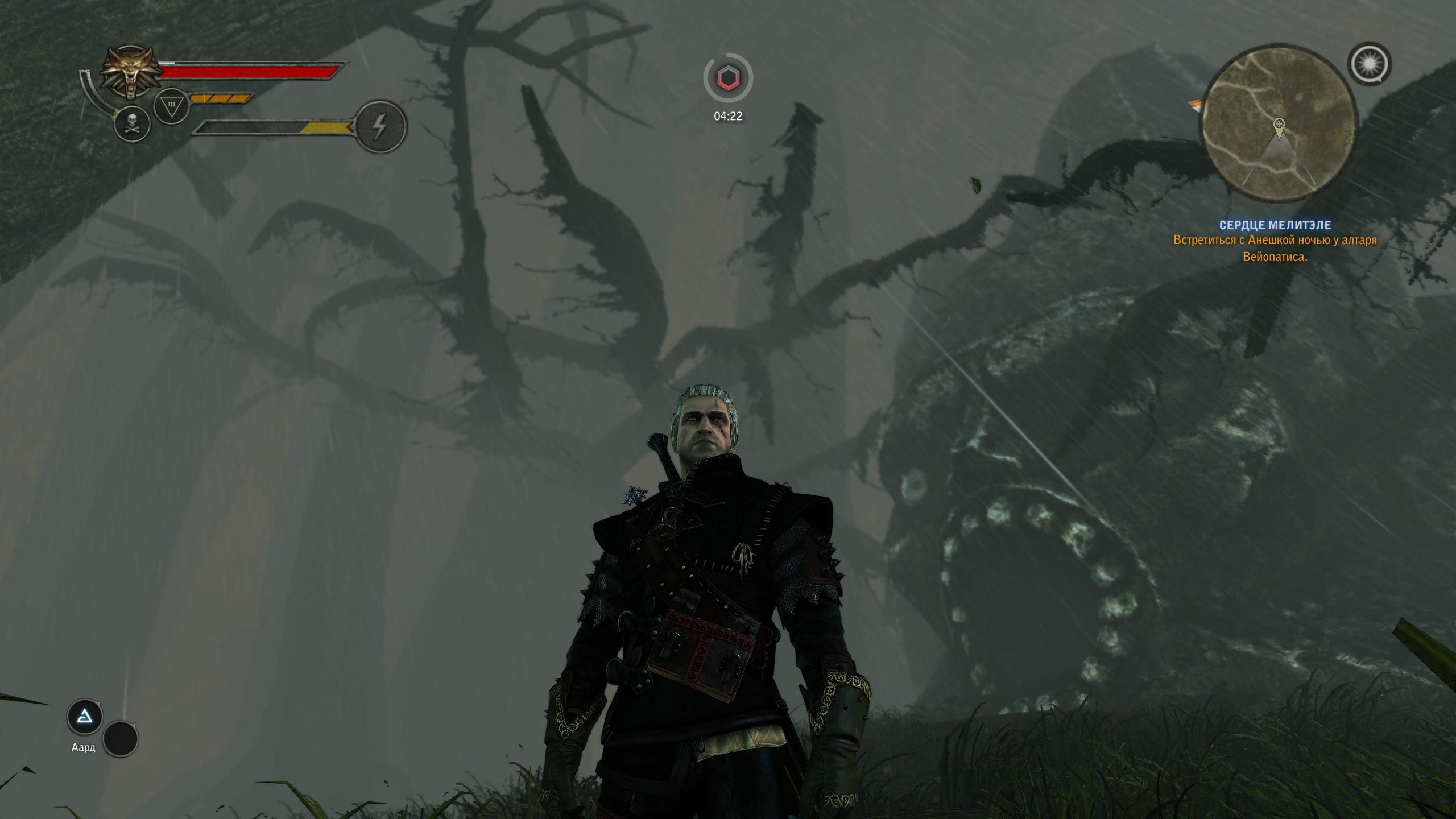 Дождики в лесу - The Witcher 2: Assassins of Kings