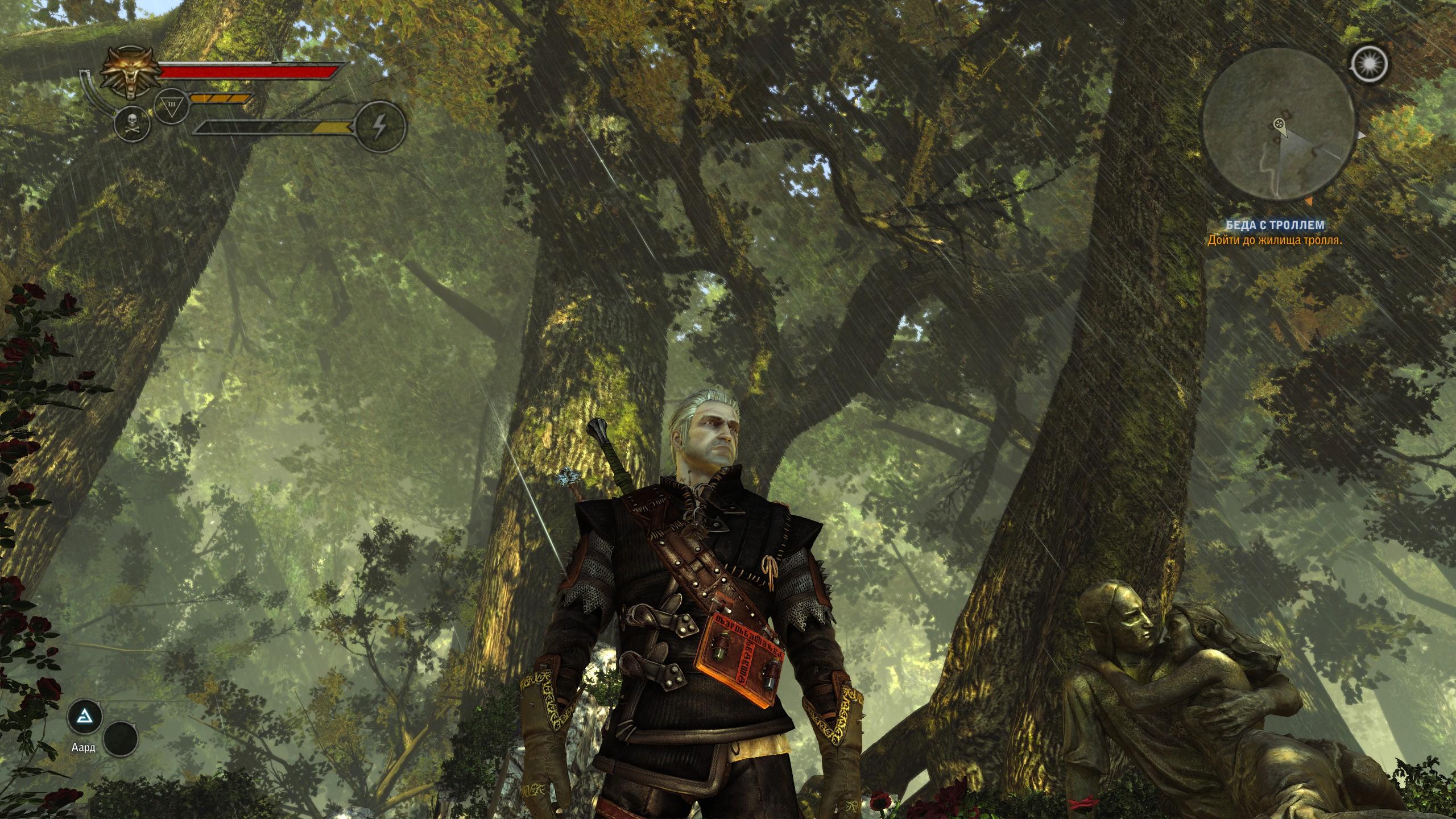 Дождики в лесу - Witcher 2: Assassins of Kings, the