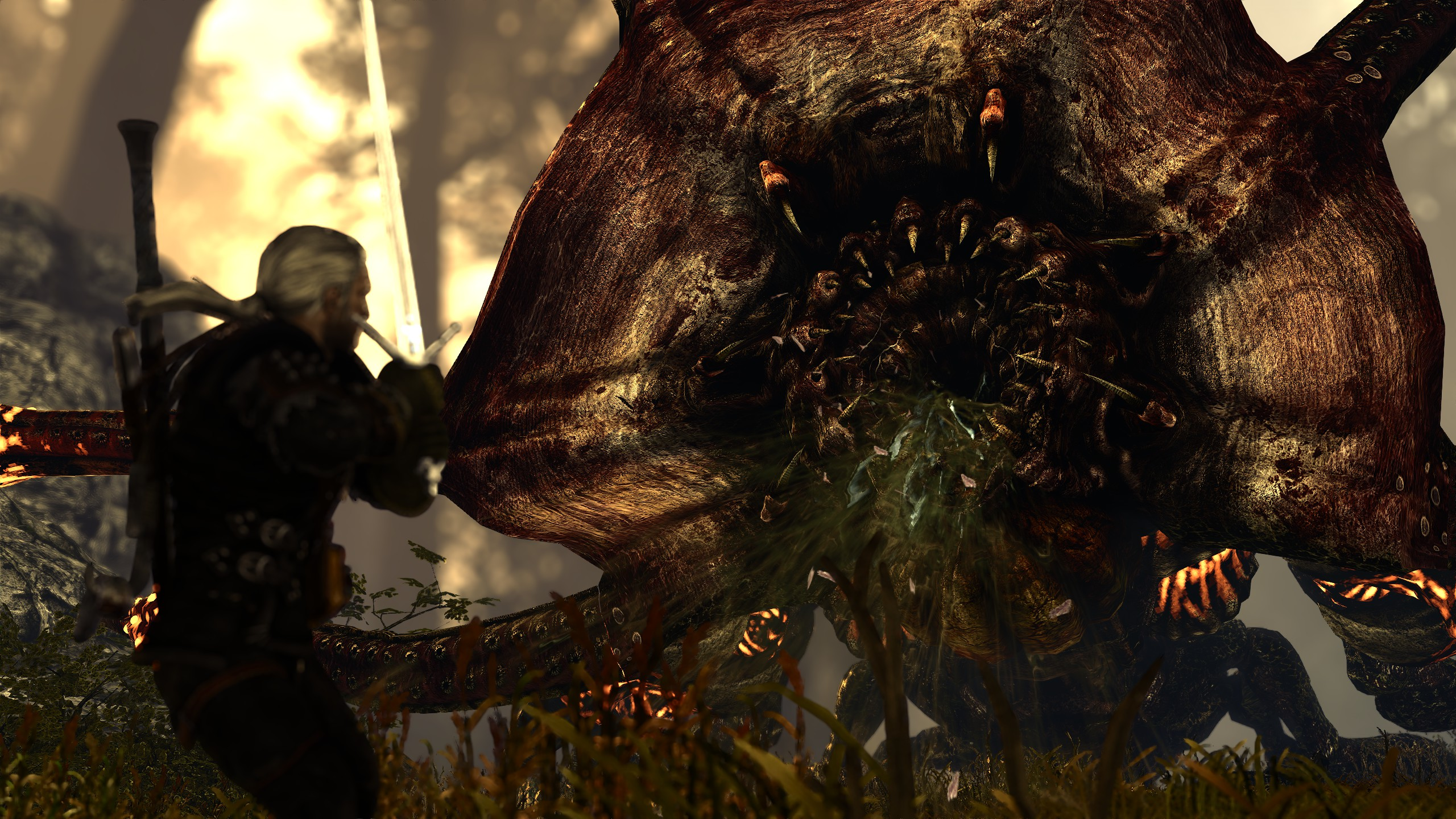 20180711230227_1.jpg - The Witcher 2: Assassins of Kings