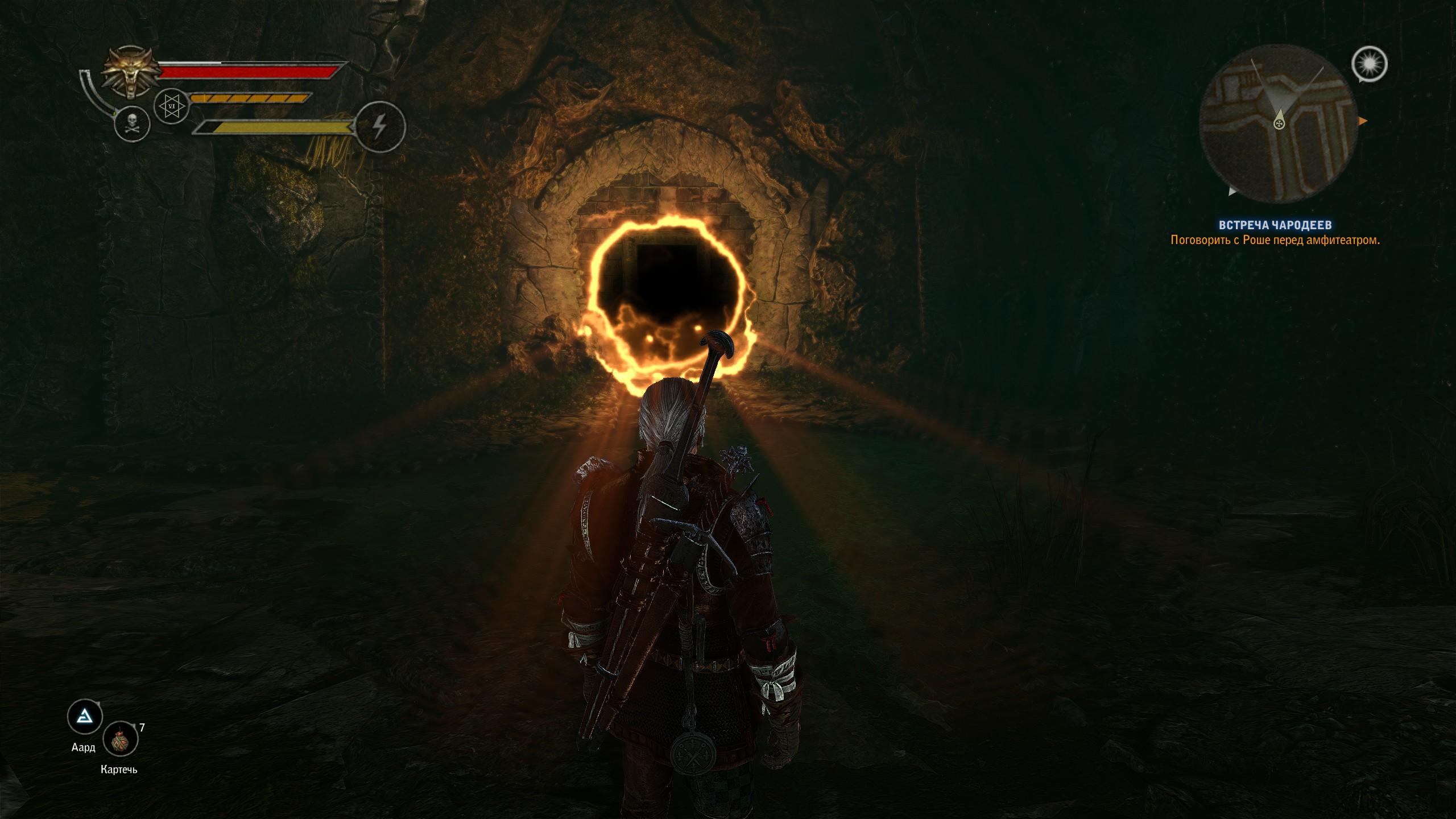 Что мы говорим порталам!? Не сегодня! - Witcher 2: Assassins of Kings, the