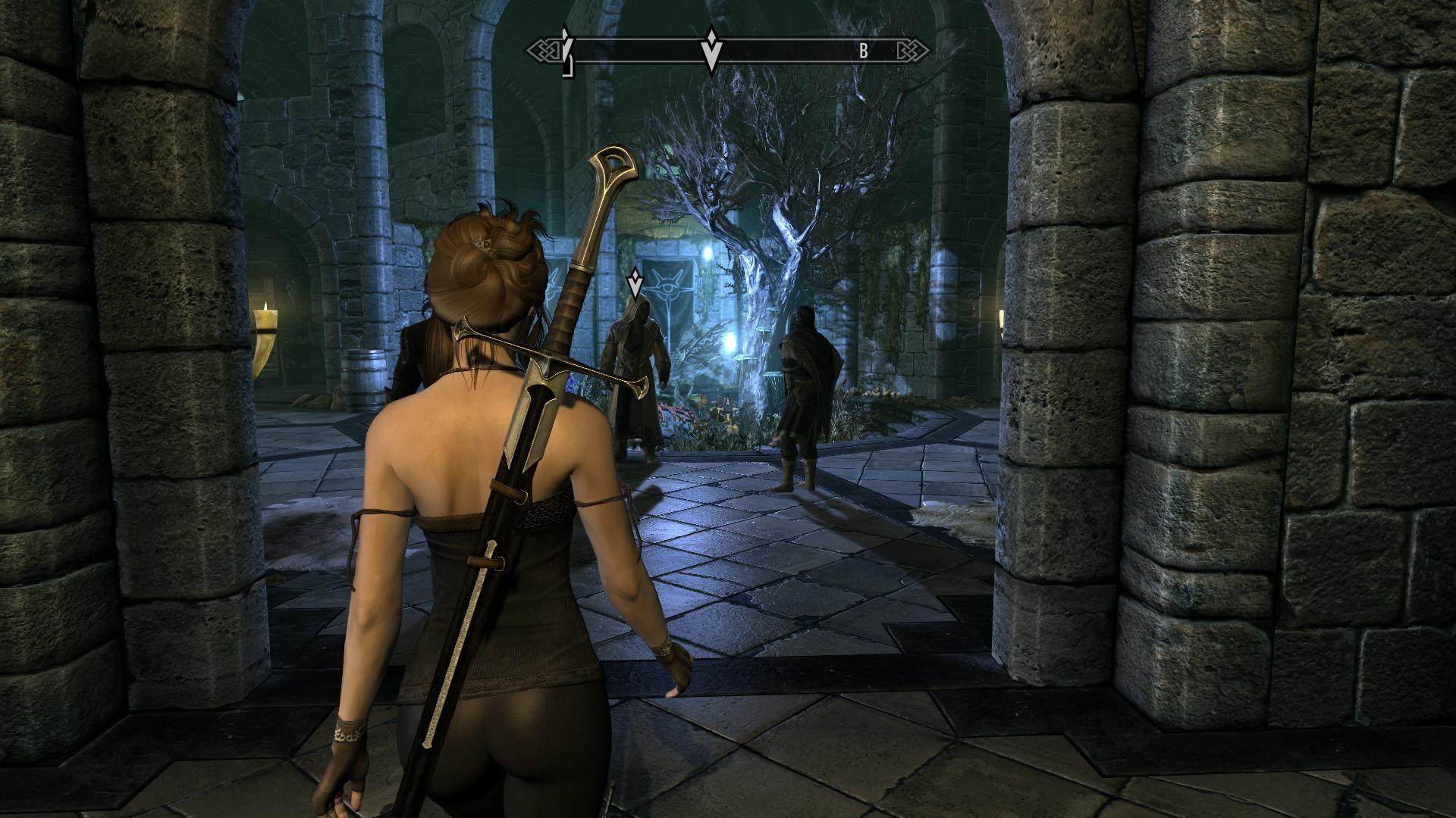 TESV_original 2014-01-09 07-53-26-20f.jpg - Elder Scrolls 5: Skyrim, the