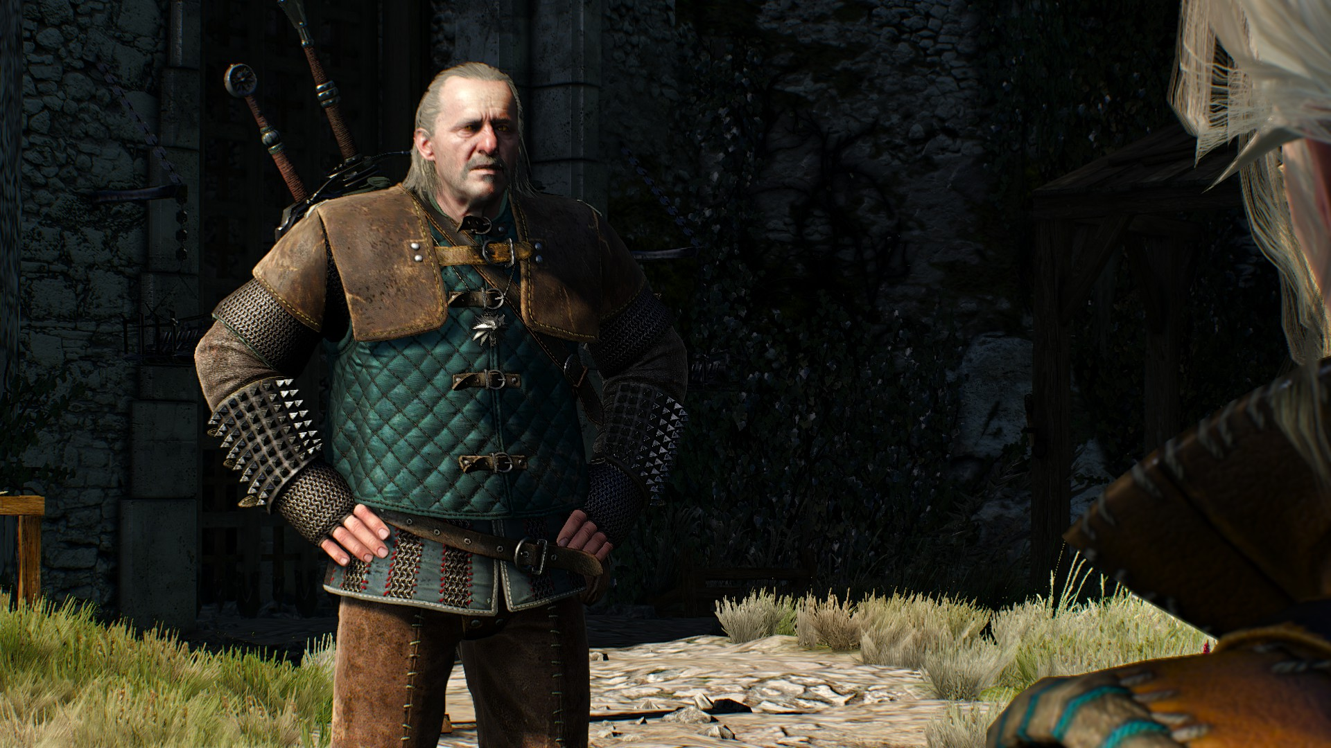 20180825164342_1.jpg - Witcher 3: Wild Hunt, the