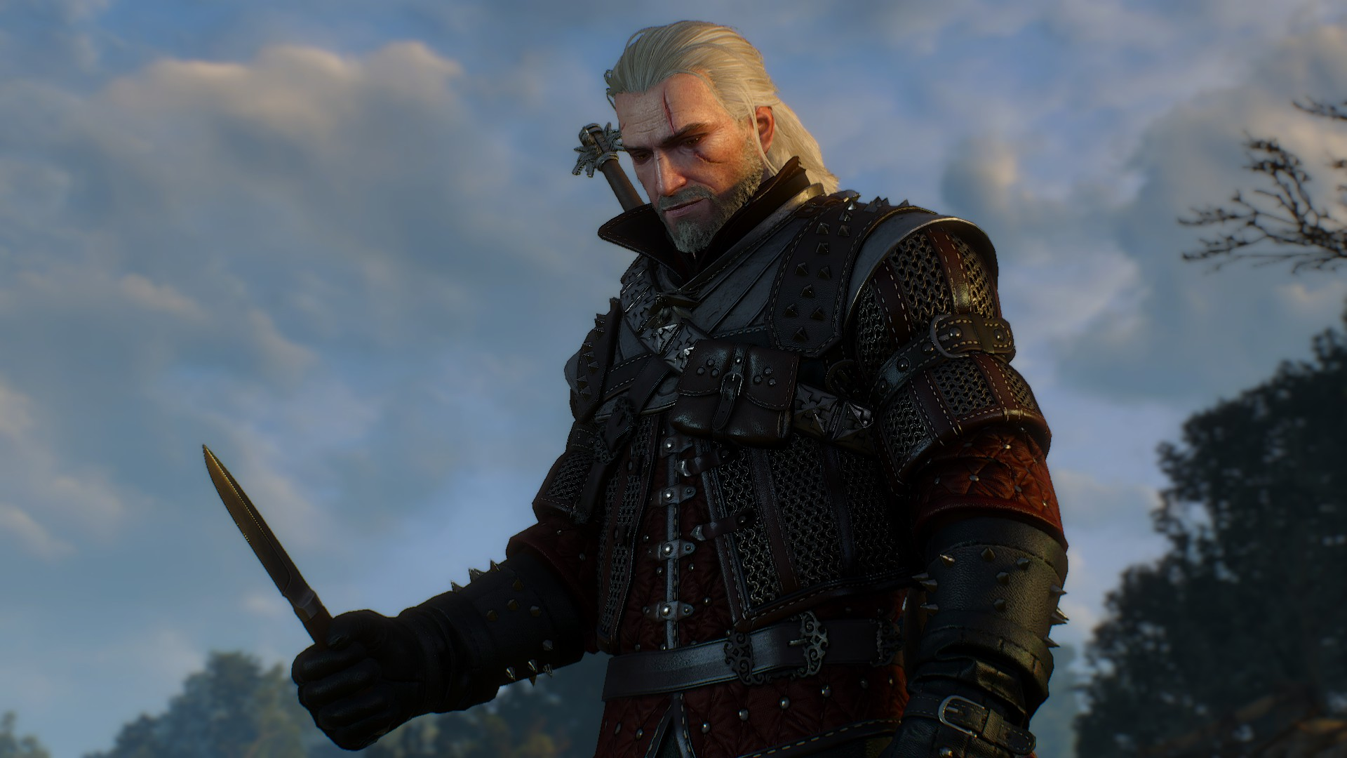 20180826183310_1.jpg - Witcher 3: Wild Hunt, the