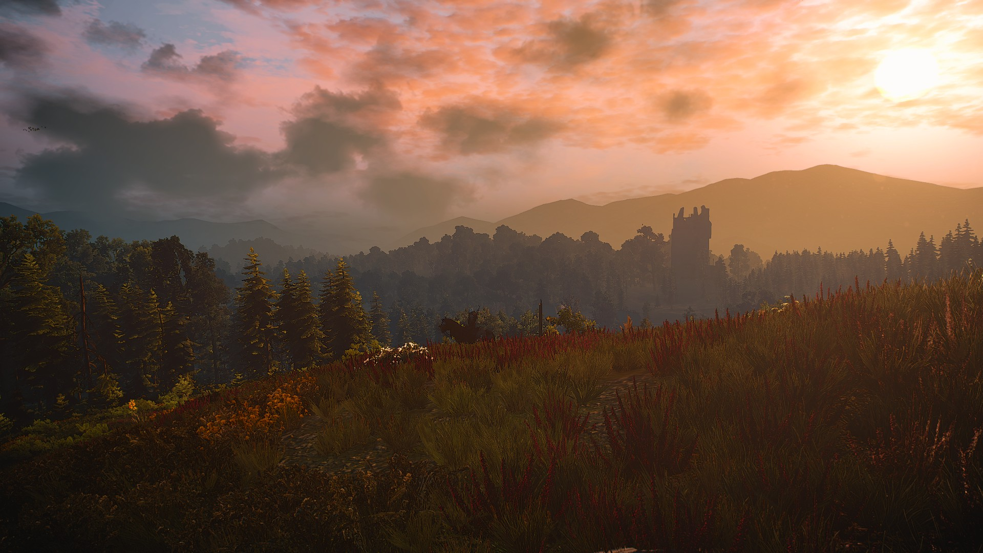 20180826221555_1.jpg - Witcher 3: Wild Hunt, the