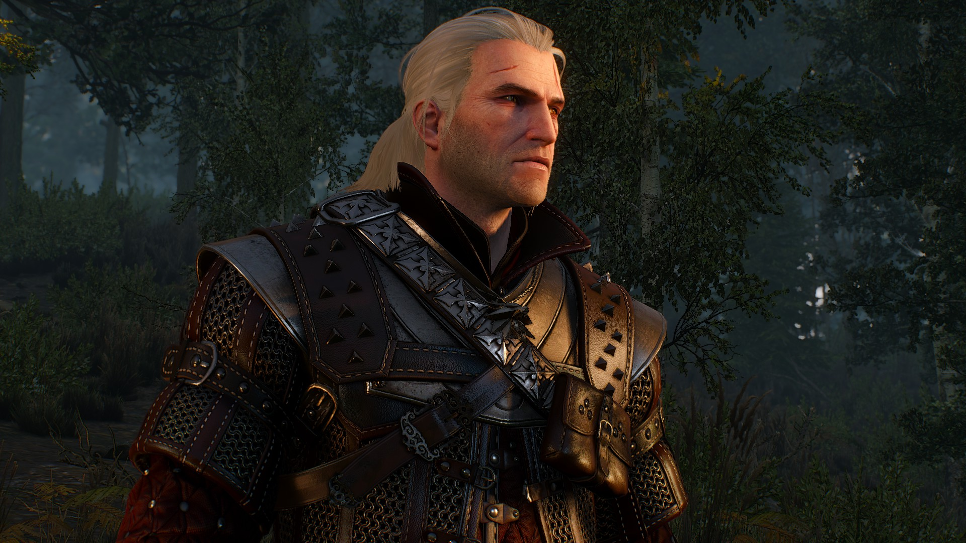 20180929102613_1.jpg - Witcher 3: Wild Hunt, the