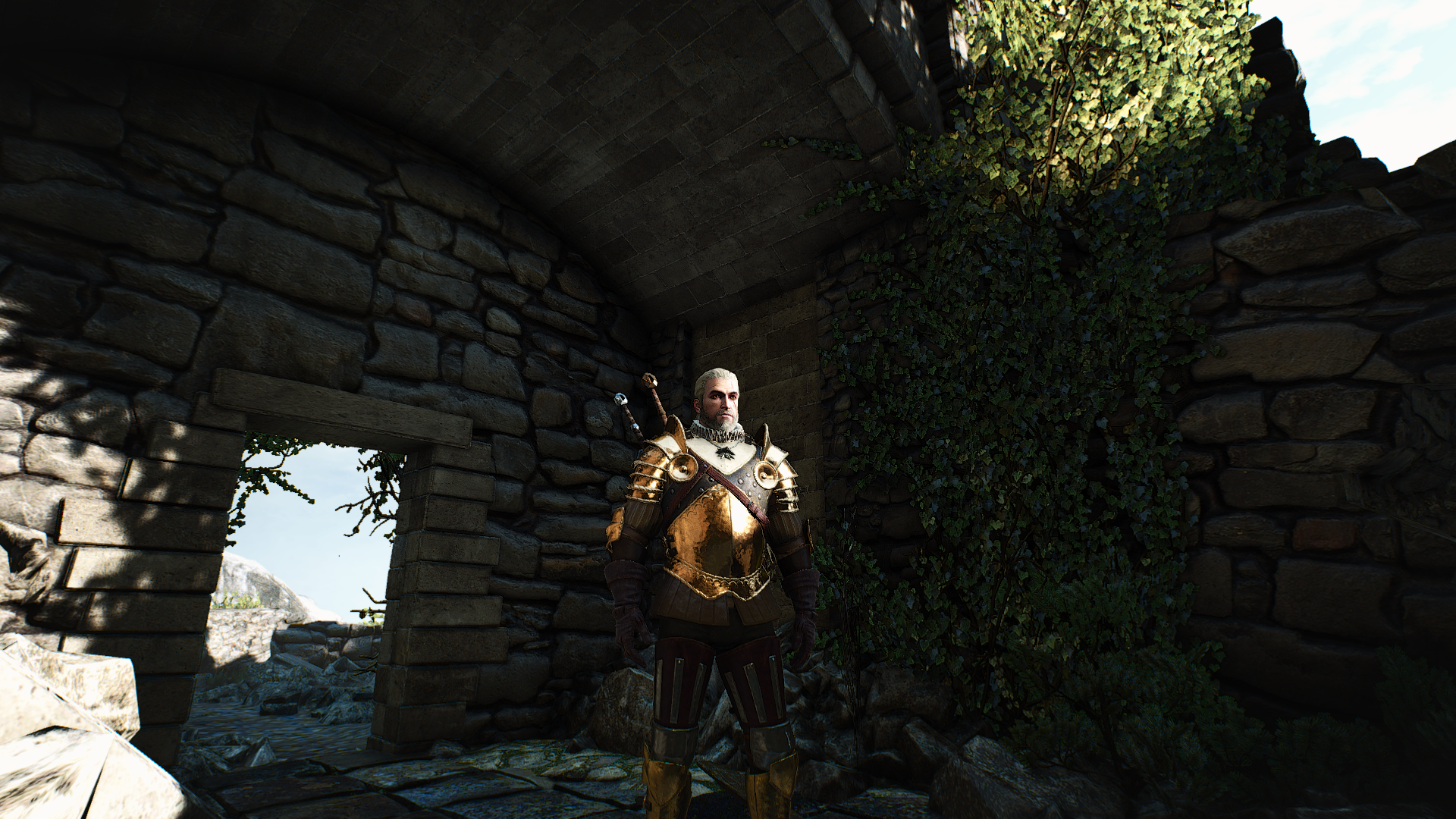 The Witcher 3 15.10.2018 22_49_42.png - Witcher 3: Wild Hunt, the