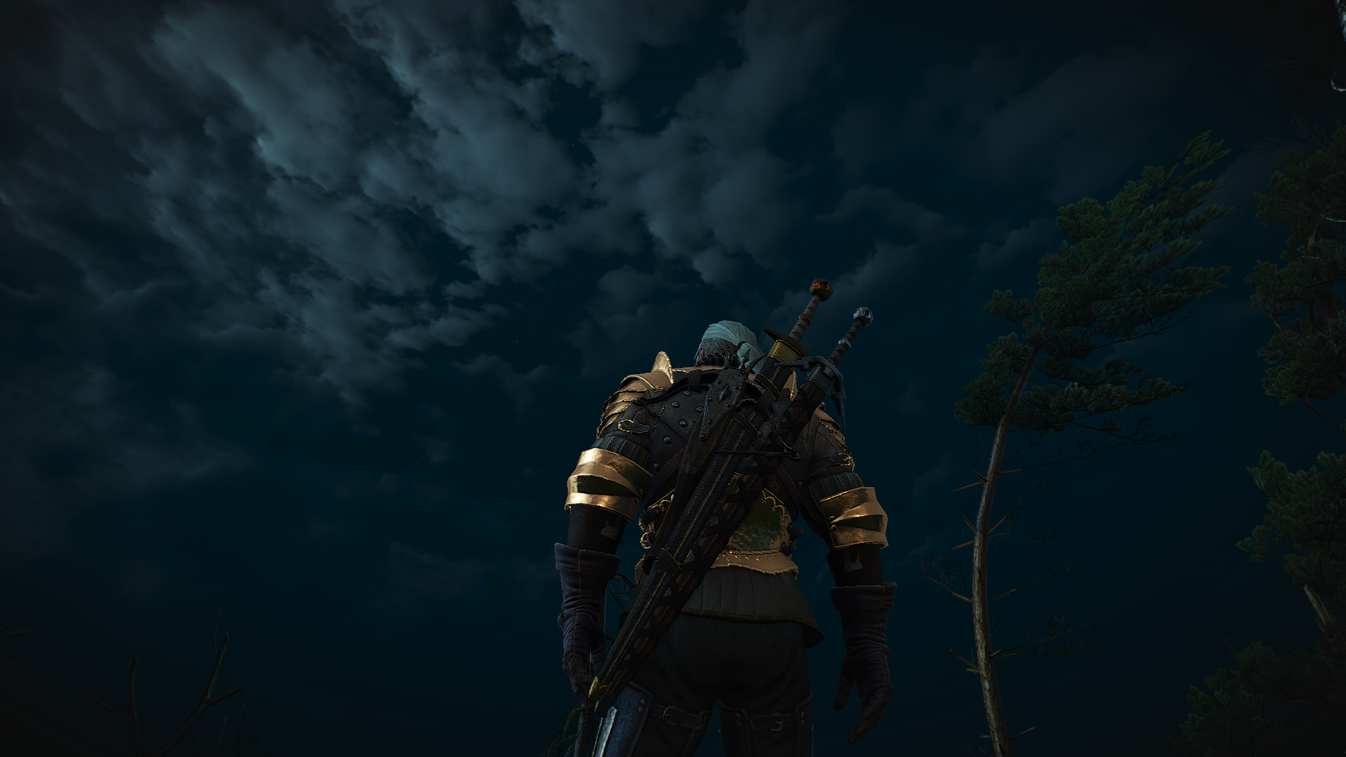 The Witcher 3 15.10.2018 23_27_26.png - Witcher 3: Wild Hunt, the