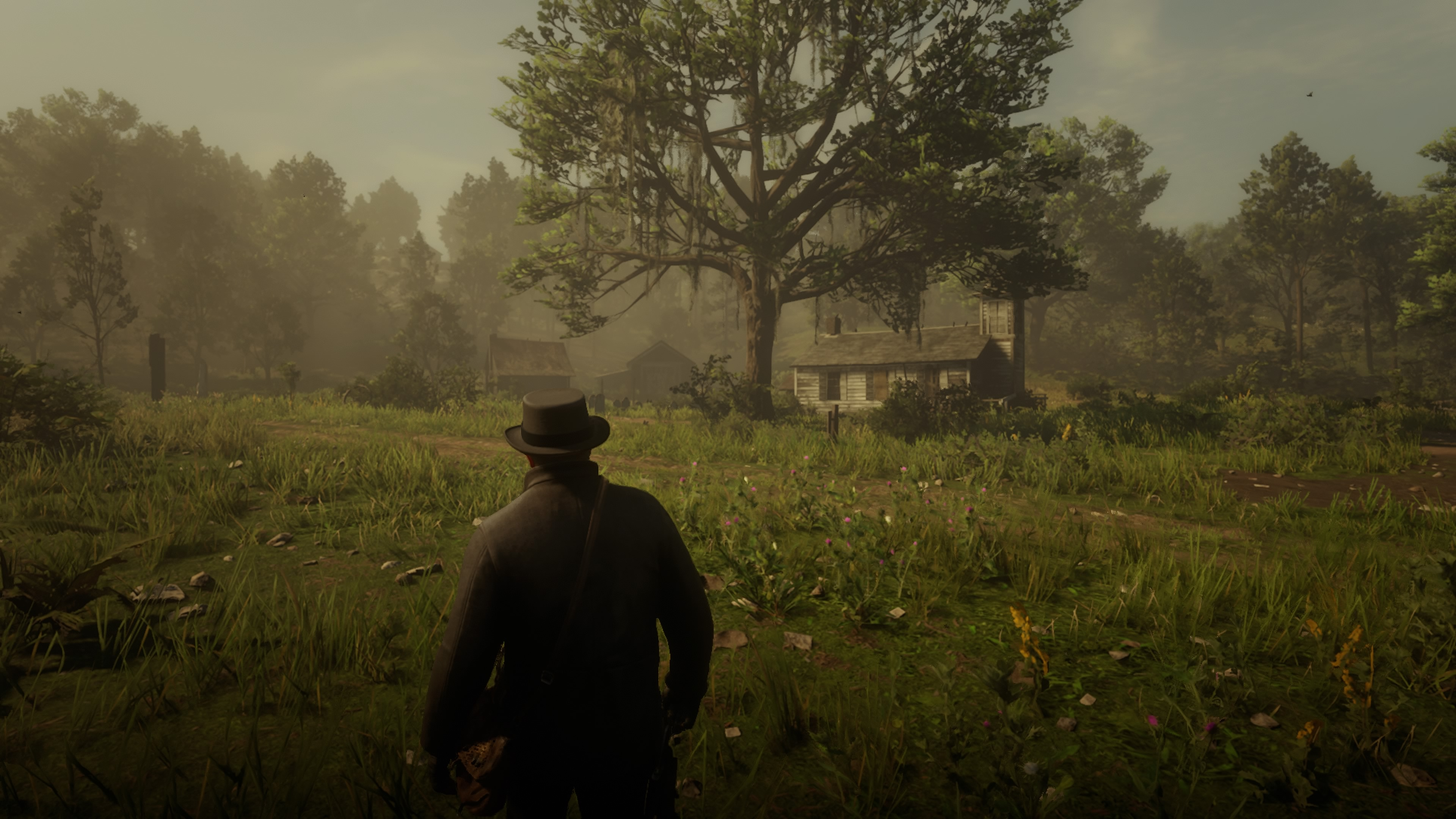 Red Dead Redemption 2_20181028234837.jpg - Red Dead Redemption 2