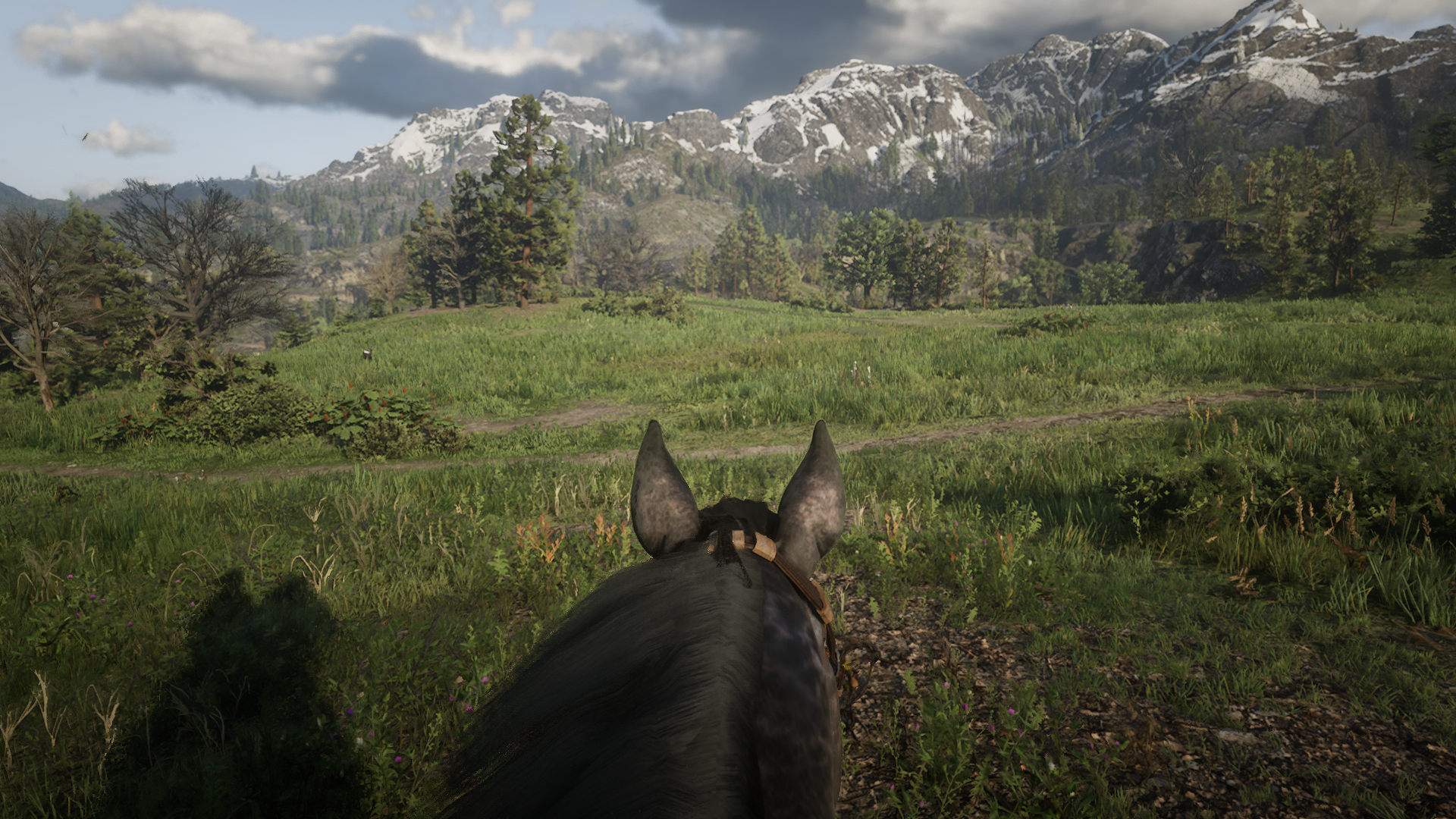 Red Dead Redemption 2_20181030122143.png - Red Dead Redemption 2