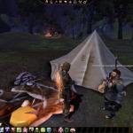 Dragon Age: Origins Как перестать орать? :D