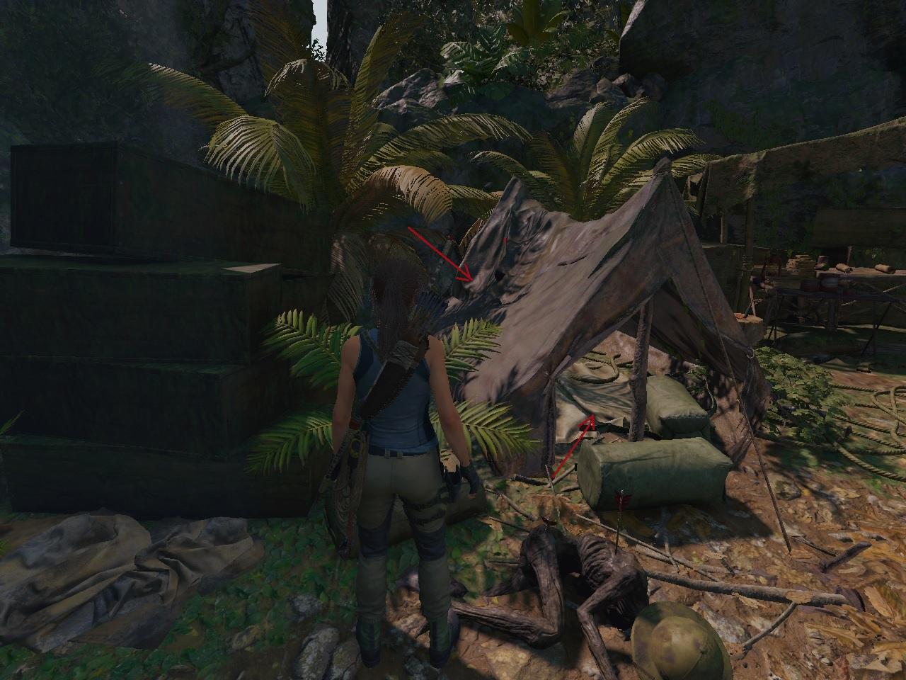 13.jpg - Shadow of the Tomb Raider