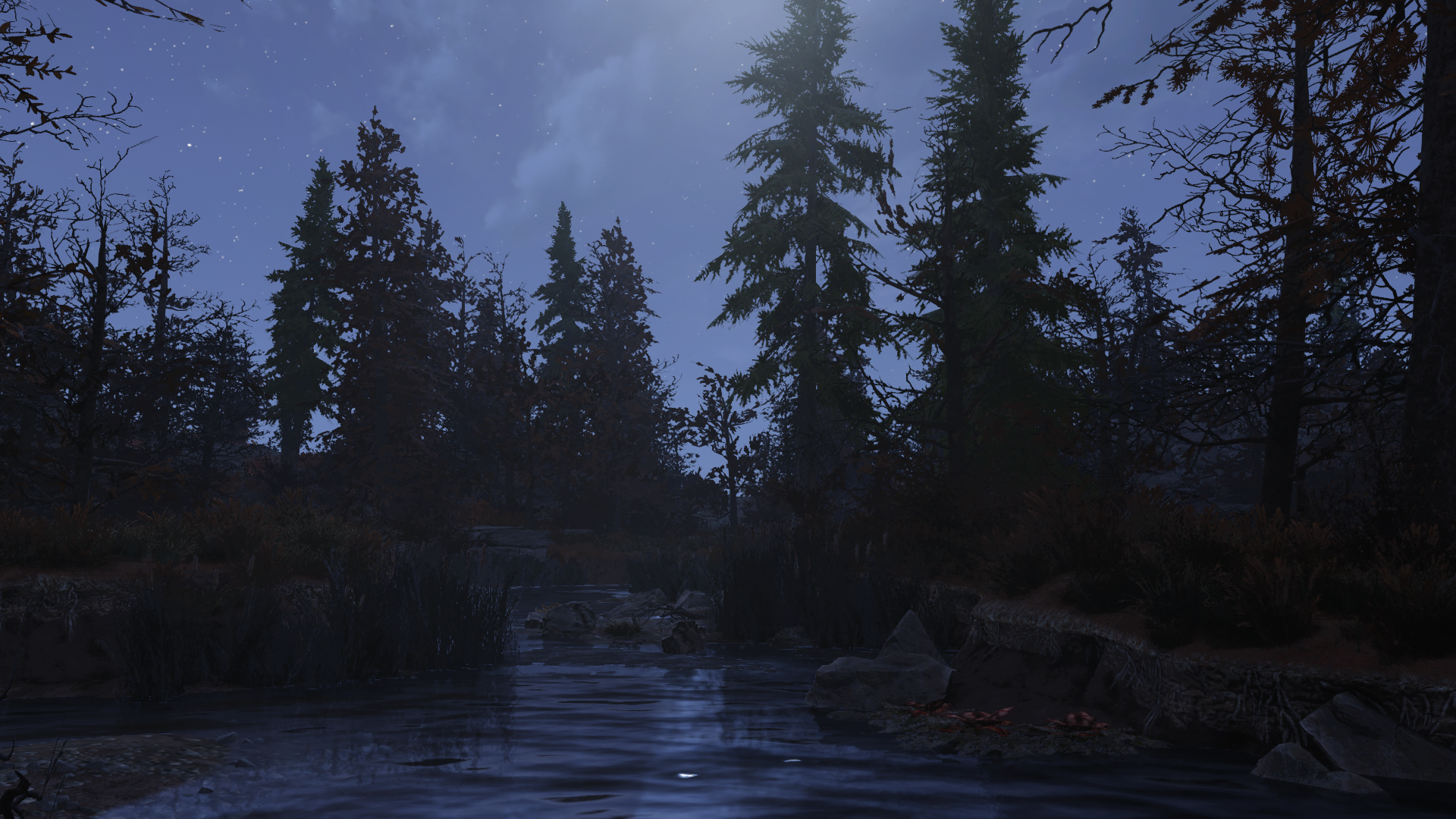 Болото ночью - Fallout 76
