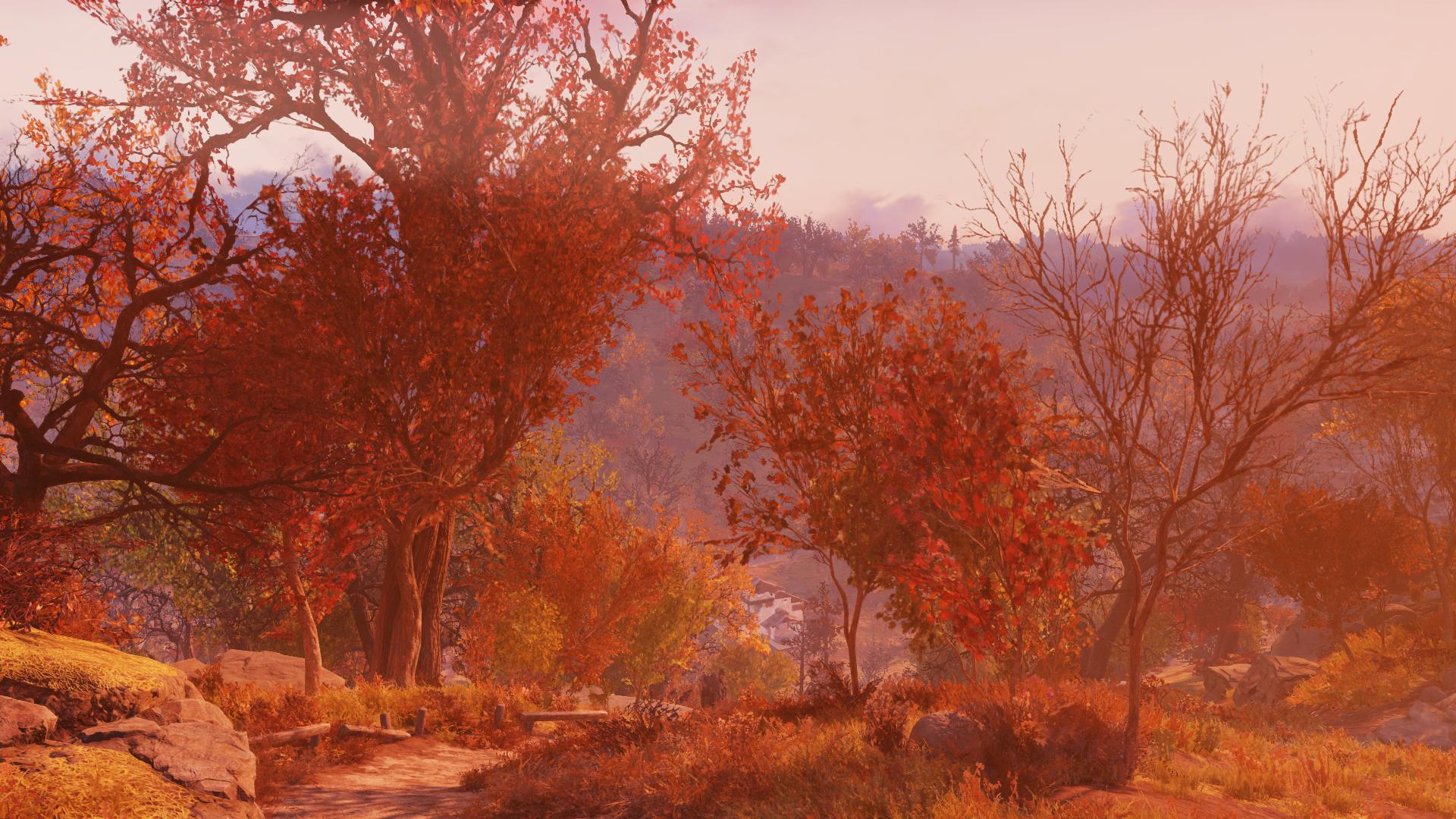 Осенний лес - Fallout 76