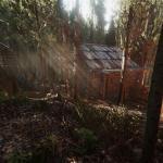 Heat Хижина в лесу