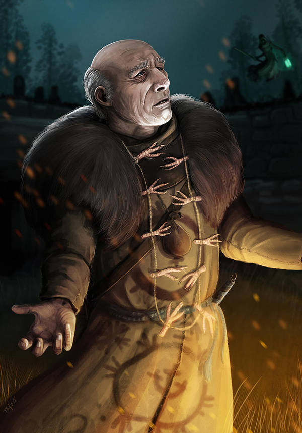 Tamarandom-Ворожей-Ведьмак-(The-Witcher)-фэндомы-4901706.jpeg - The Witcher 3: Wild Hunt