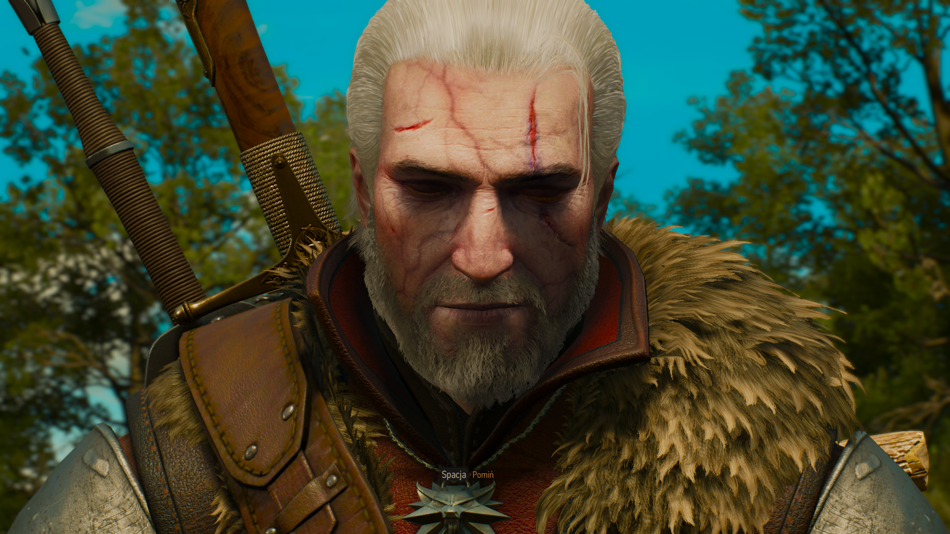 The Witcher 3 27.12.2018 22_23_00.png - Witcher 3: Wild Hunt, the