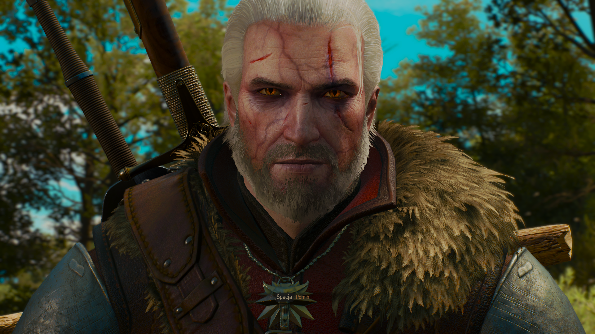 The Witcher 3 27.12.2018 22_23_13.png - Witcher 3: Wild Hunt, the