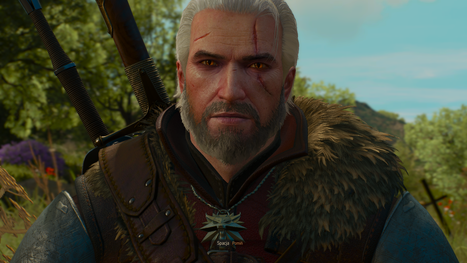 The Witcher 3 27.12.2018 22_46_29.png - Witcher 3: Wild Hunt, the