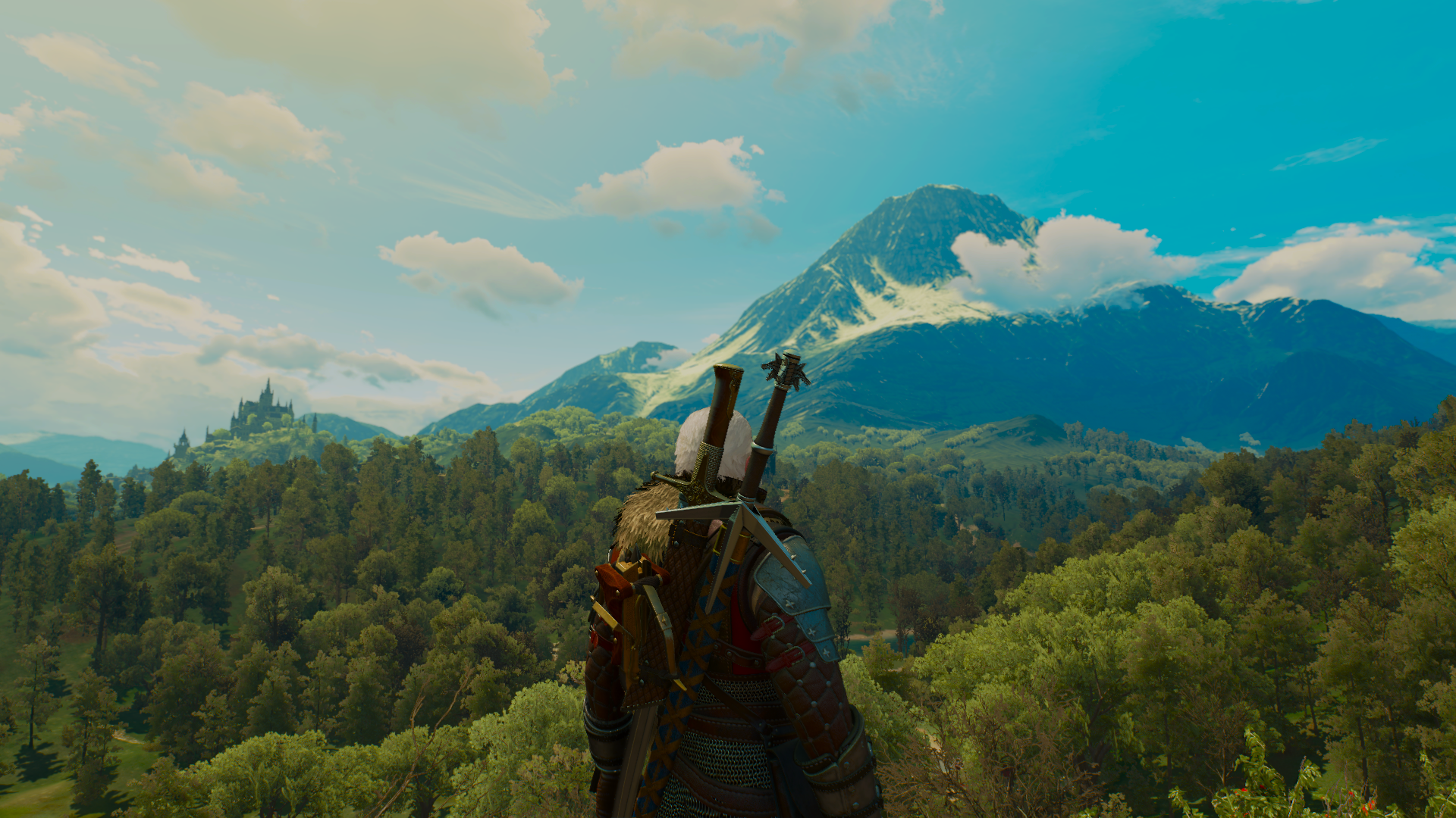 The Witcher 3 02.01.2019 00_25_04.png - The Witcher 3: Wild Hunt
