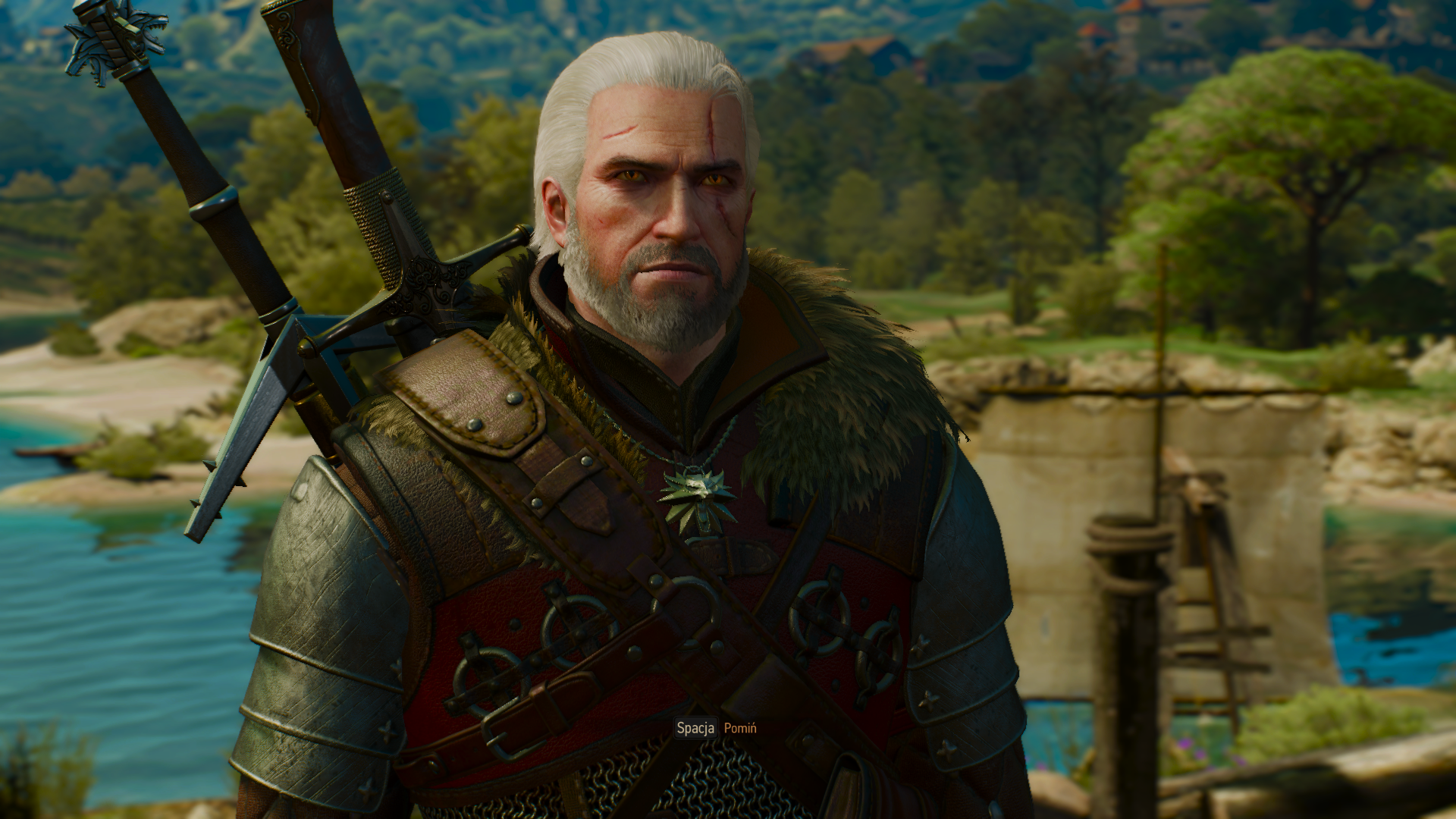 The Witcher 3 02.01.2019 23_06_55.png - Witcher 3: Wild Hunt, the