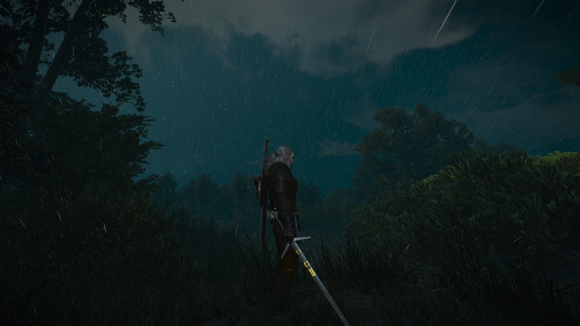 The Witcher 3 03.01.2019 23_51_32.png - Witcher 3: Wild Hunt, the