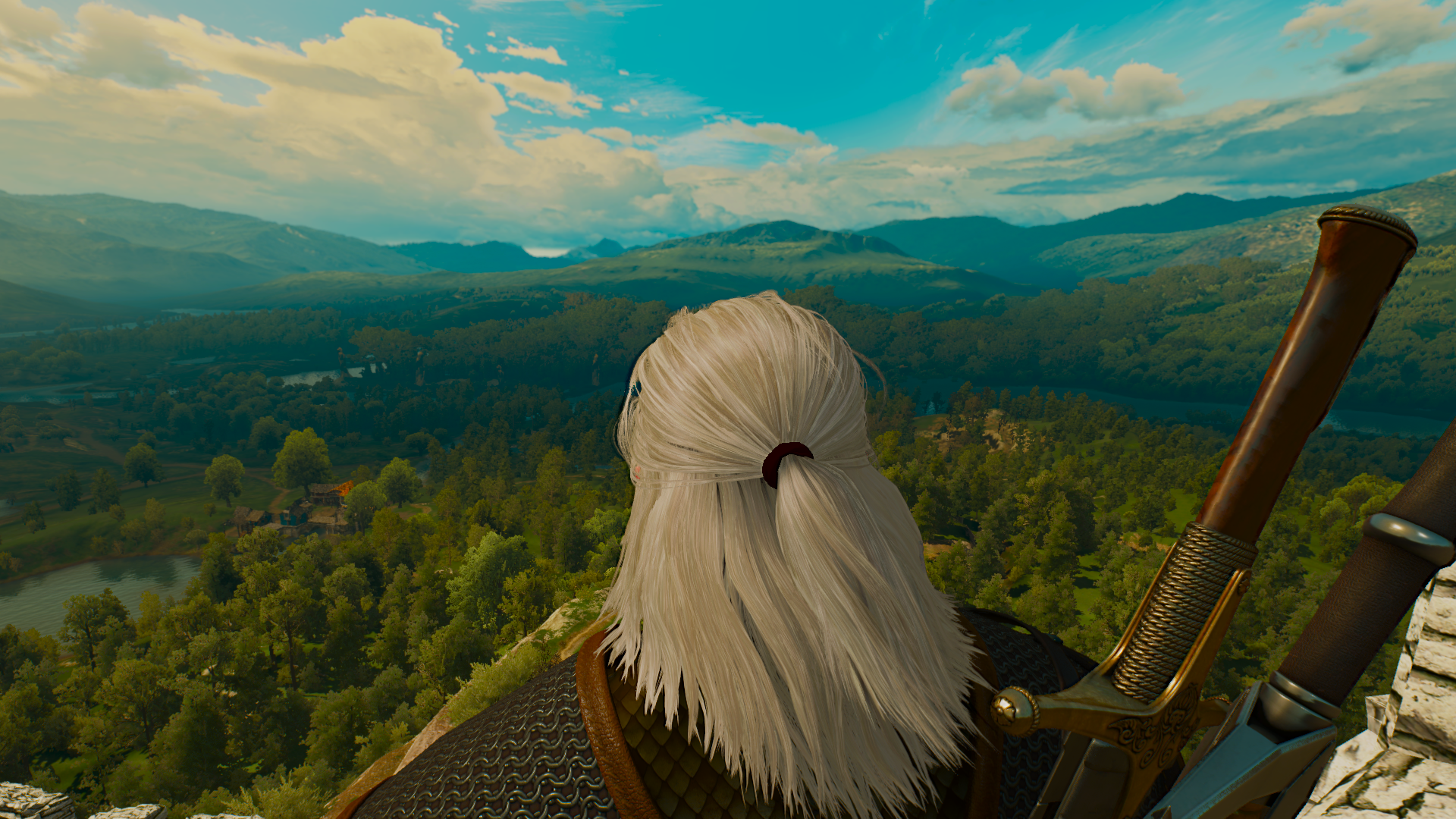 The Witcher 3 05.01.2019 20_03_00.png - Witcher 3: Wild Hunt, the