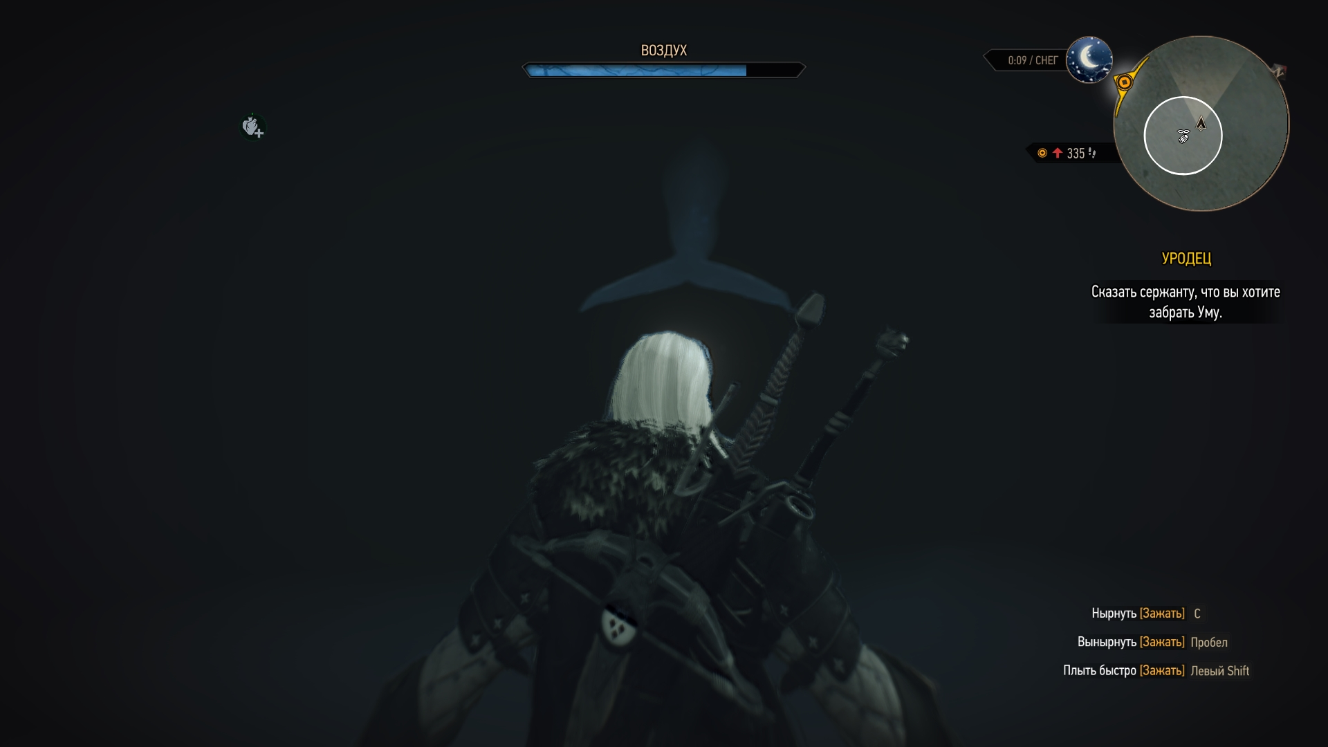 Приснится такое ночью - можно заикой встать - Witcher 3: Wild Hunt, the Юмор
