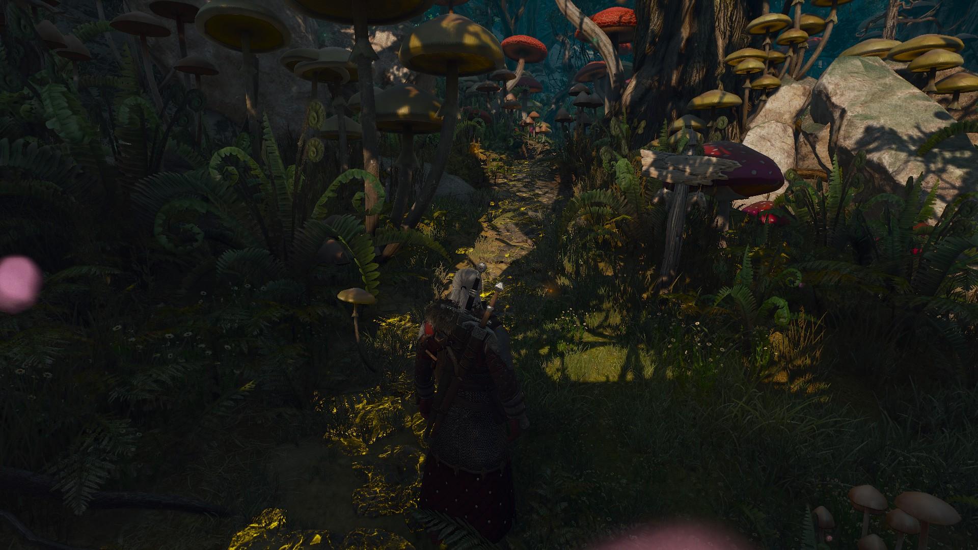 20170607203014_1.jpg - Witcher 3: Wild Hunt, the