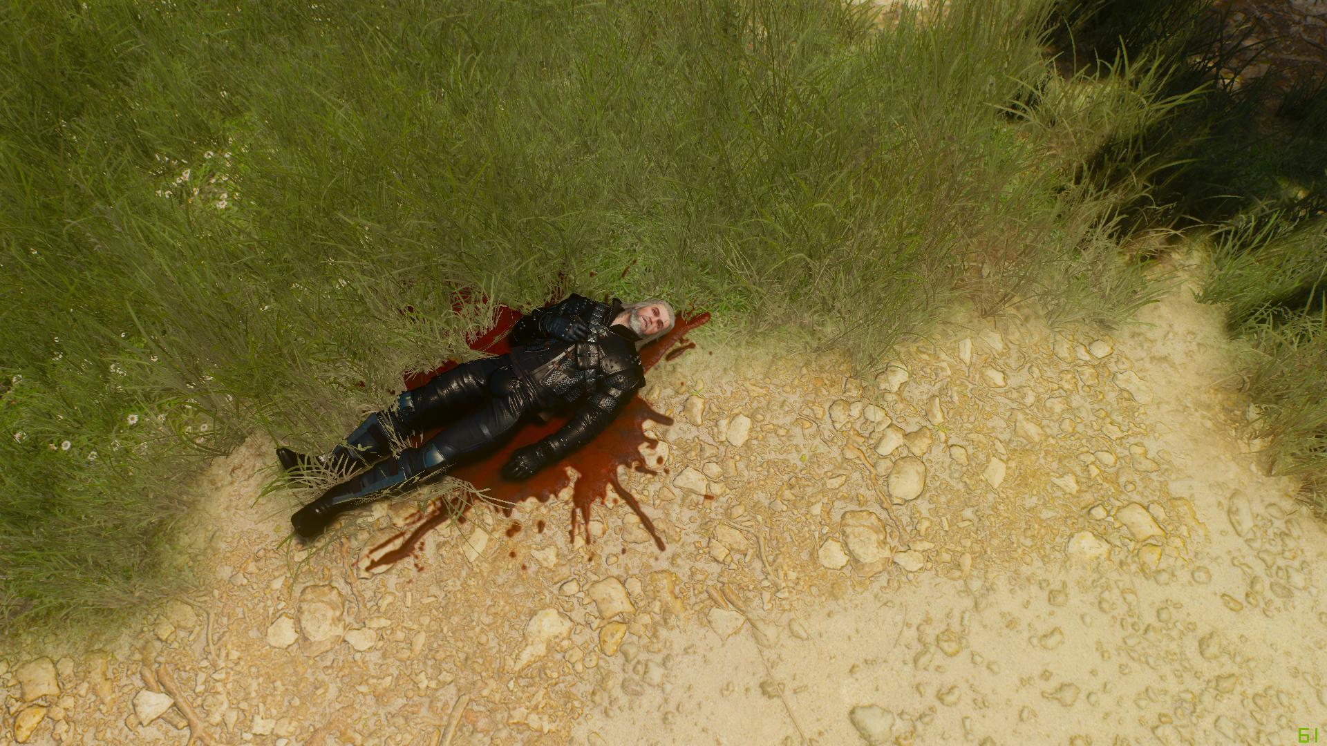 Просьба не агриться;) - Witcher 3: Wild Hunt, the