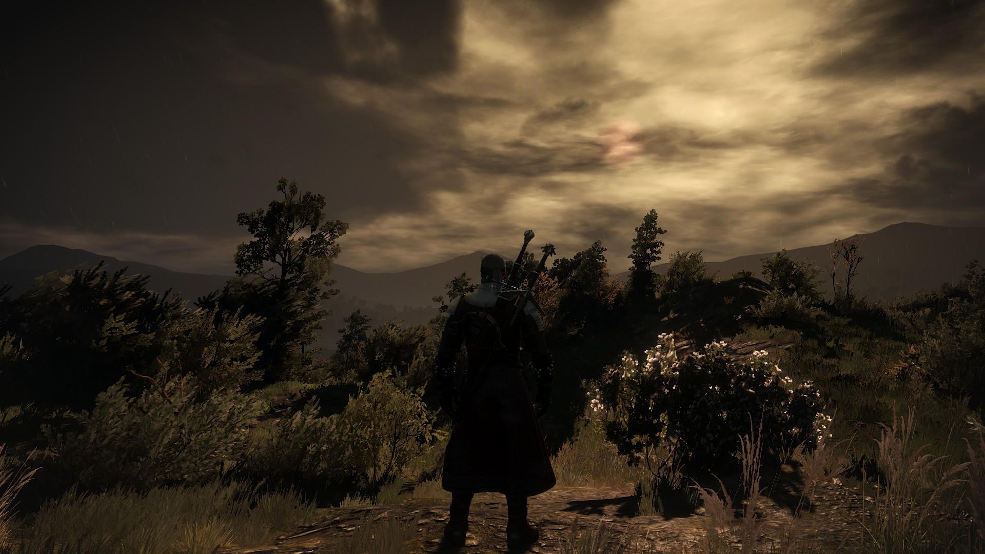 292030_screenshots_20190110002602_1.jpg - Witcher 3: Wild Hunt, the