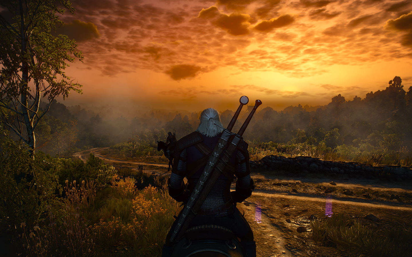 The Witcher 3 Screenshot 2018.08.25 - 21.37.36.23.png - Witcher 3: Wild Hunt, the