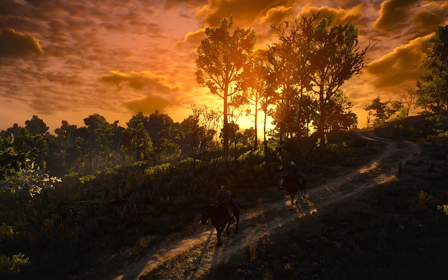 The Witcher 3 Screenshot 2018.08.25 - 21.39.13.47.png - Witcher 3: Wild Hunt, the